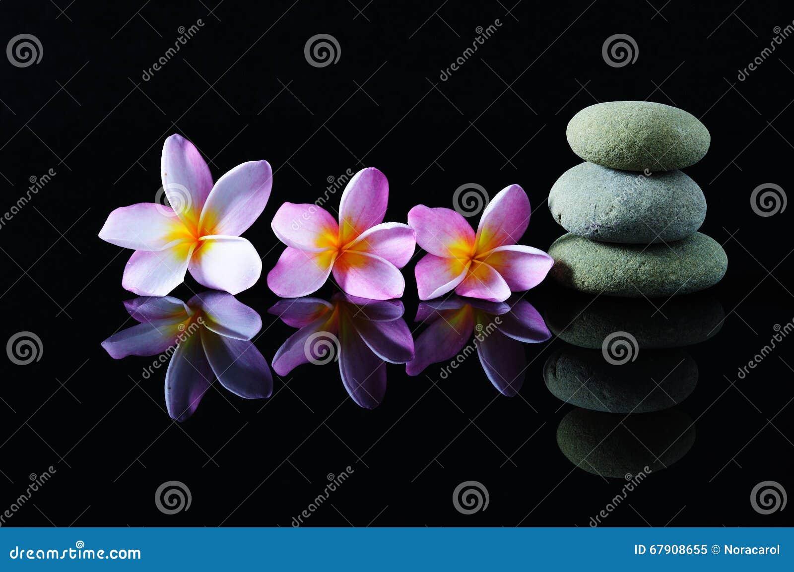 Impilato delle pietre di zen e dei fiori del frangipane
