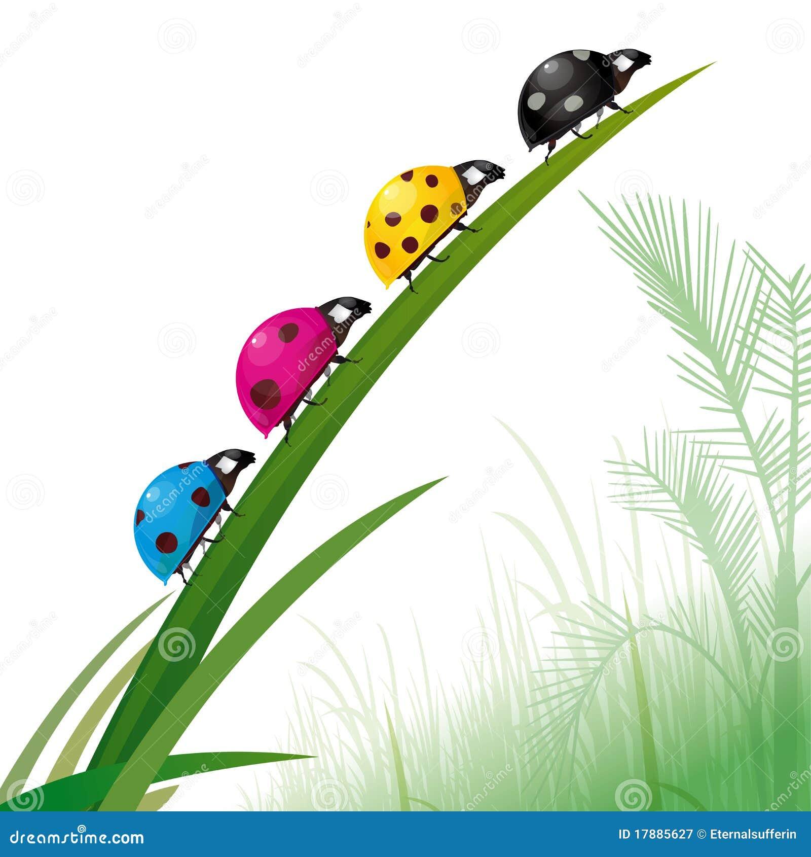Impresi  N En Color De Los Ladybugs En Hierba  Representa La Ecolog  A