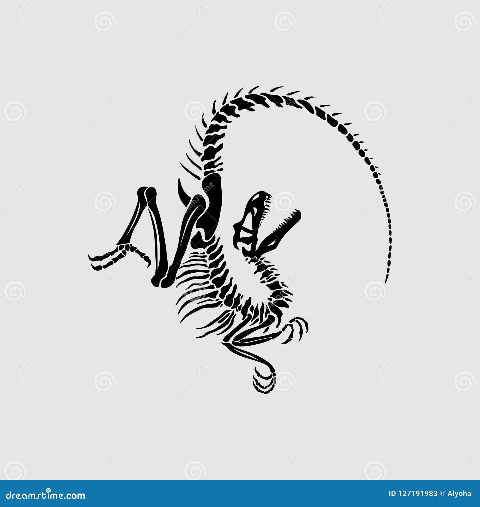 Impresión gráfica del esqueleto del Velociraptor