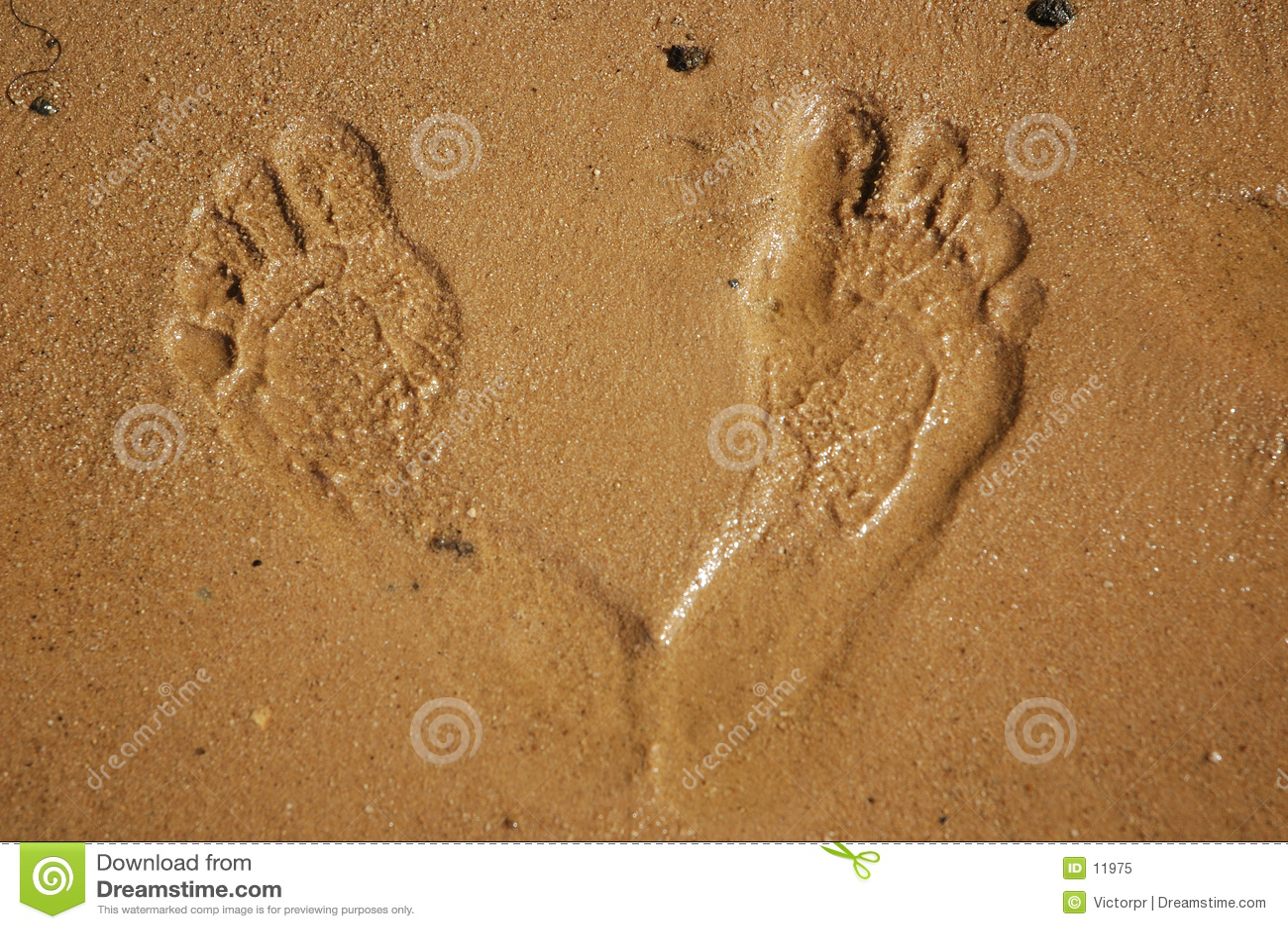 Impressions de pied