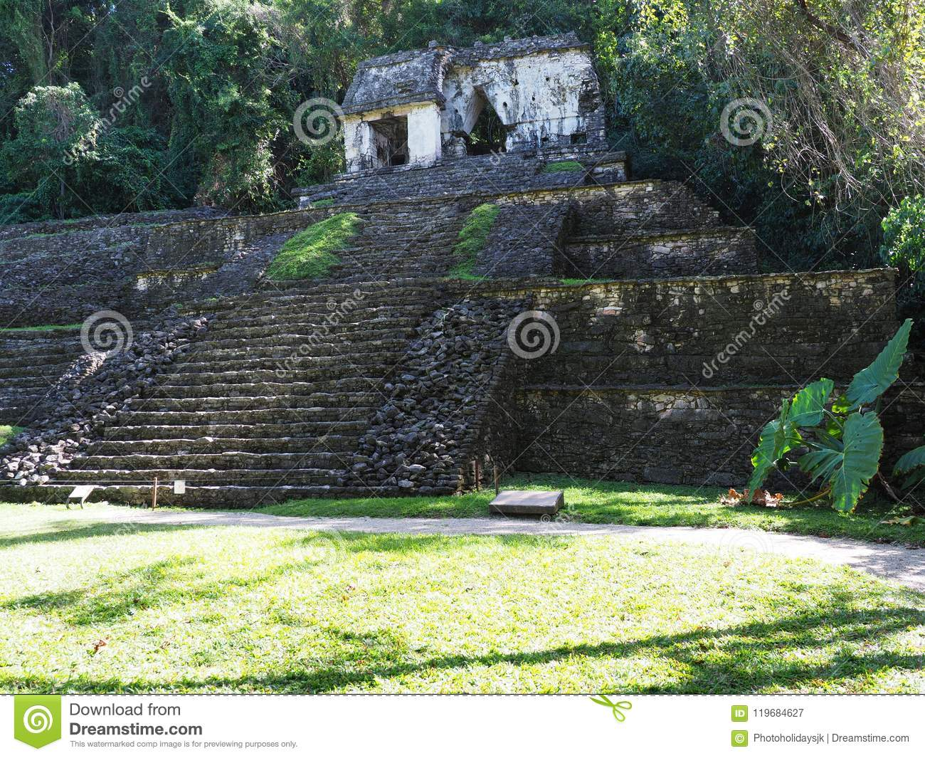 Impressive stony pyramid at ancient mayan National Park of Palenque city at Chiapas state in Mexico, landscape of jungle