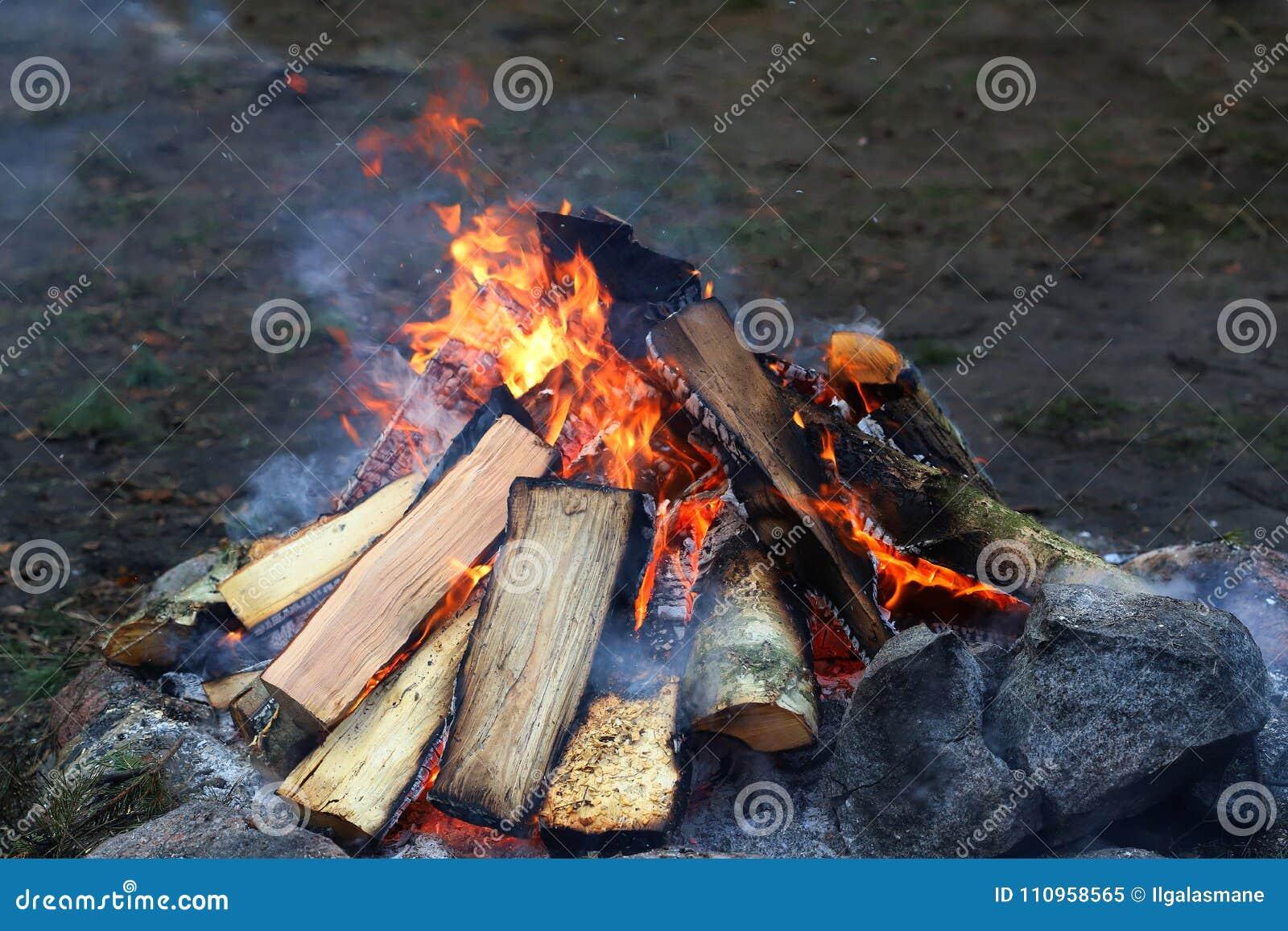 Incêndio de madeira do acampamento