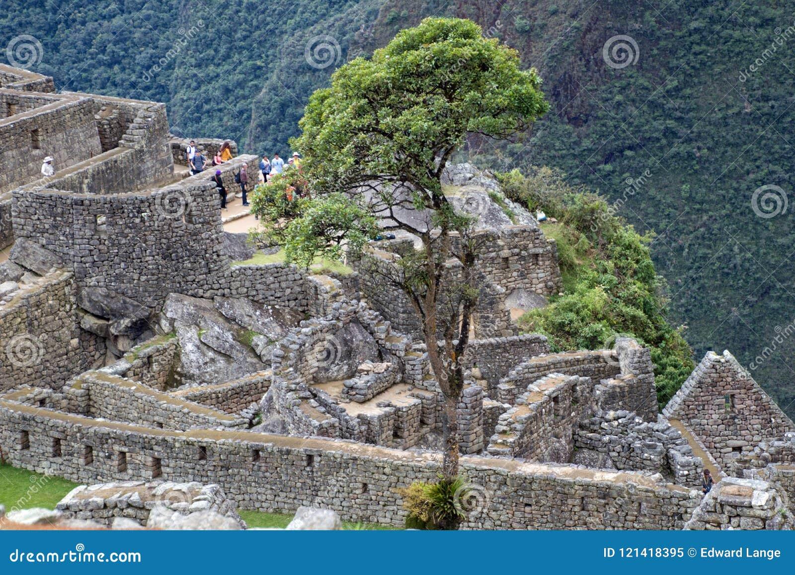 Inca Ruins antigo em Machu Picchu, Peru
