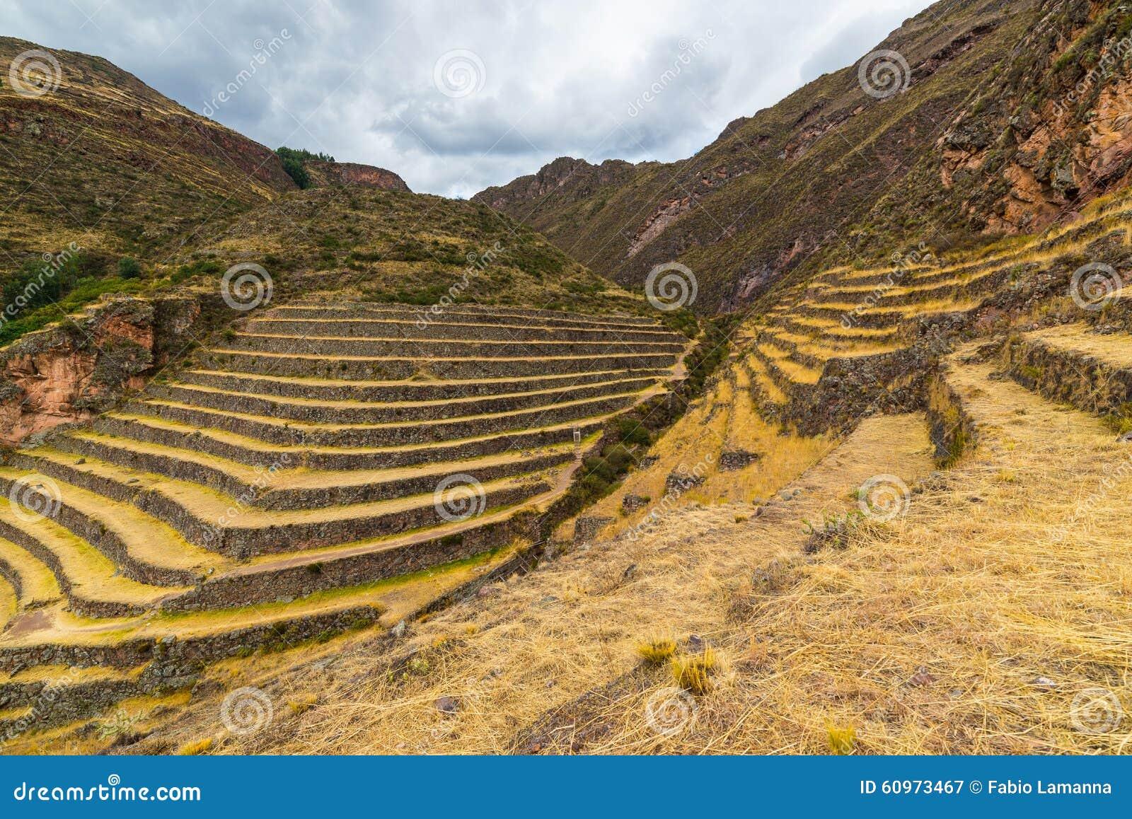 Incas terrasser i Pisac, sakral dal, Peru