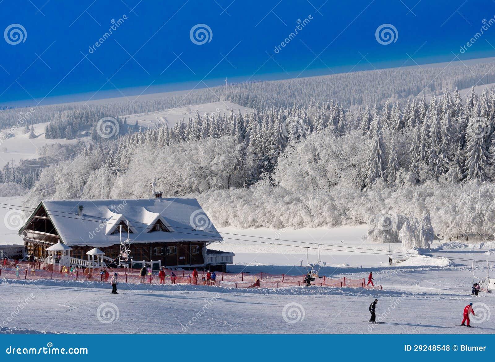 Download Inclinação do esqui foto de stock. Imagem de nordic, povos - 29248548