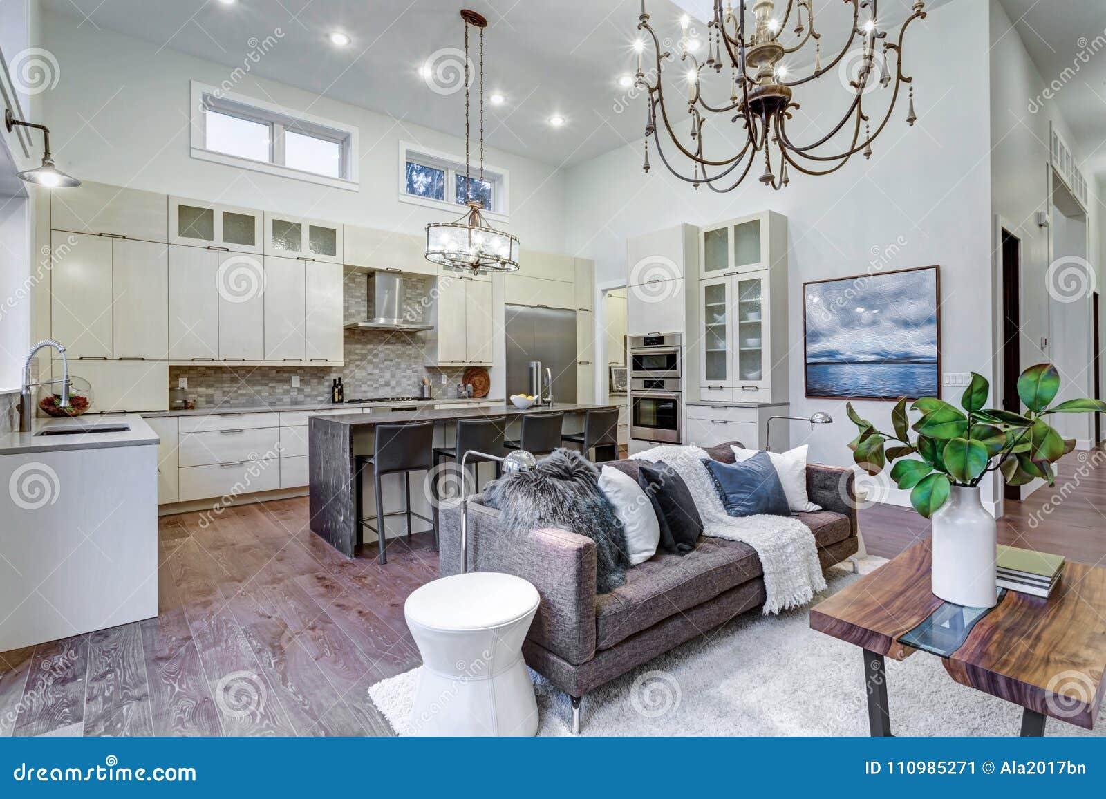 47 Beautiful Living Rooms (Interior Design Pictures ...