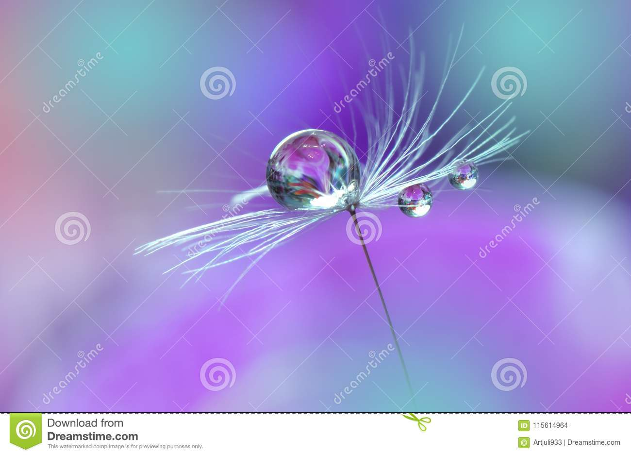 Beautiful Violet Nature Background Art Photography Floral Design Colorful Abstract Macro Water Drop Relaxation Flowers Wallpaper Stock Photo Image Of Banner Artistic 115614964