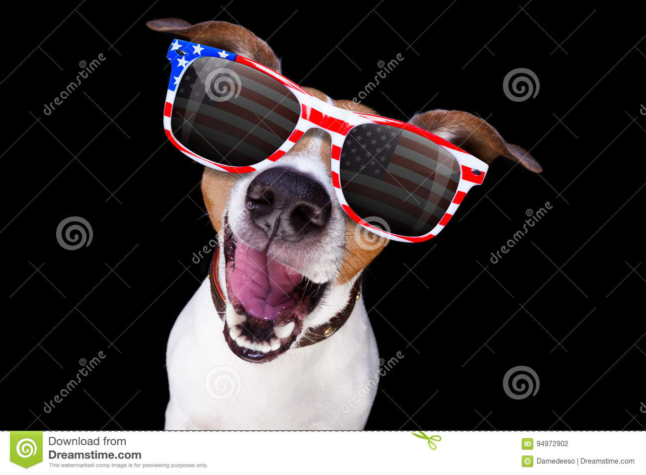 Download Independence Day 4th Of July Dog Stock Photo - Image of liberty, america: 94972902