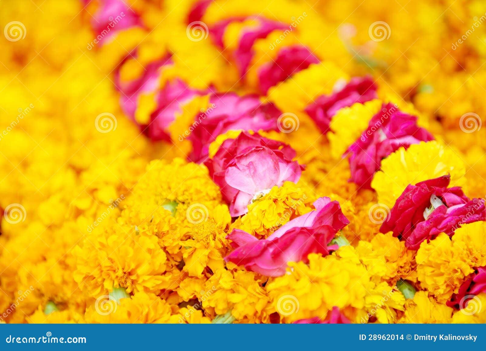 Indiańska tradycyjna pomarańcze kwitnie girlandę