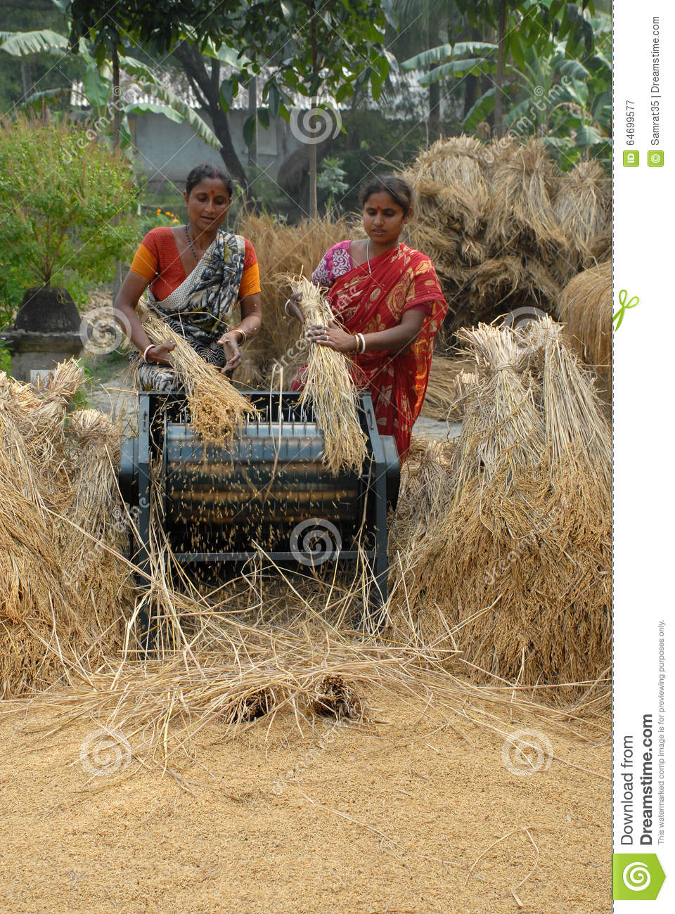indian agriculture Indian agriculture 1 indianagriculture 2 definition• the science or practice of farming, including cultivation of the soil for the growing.