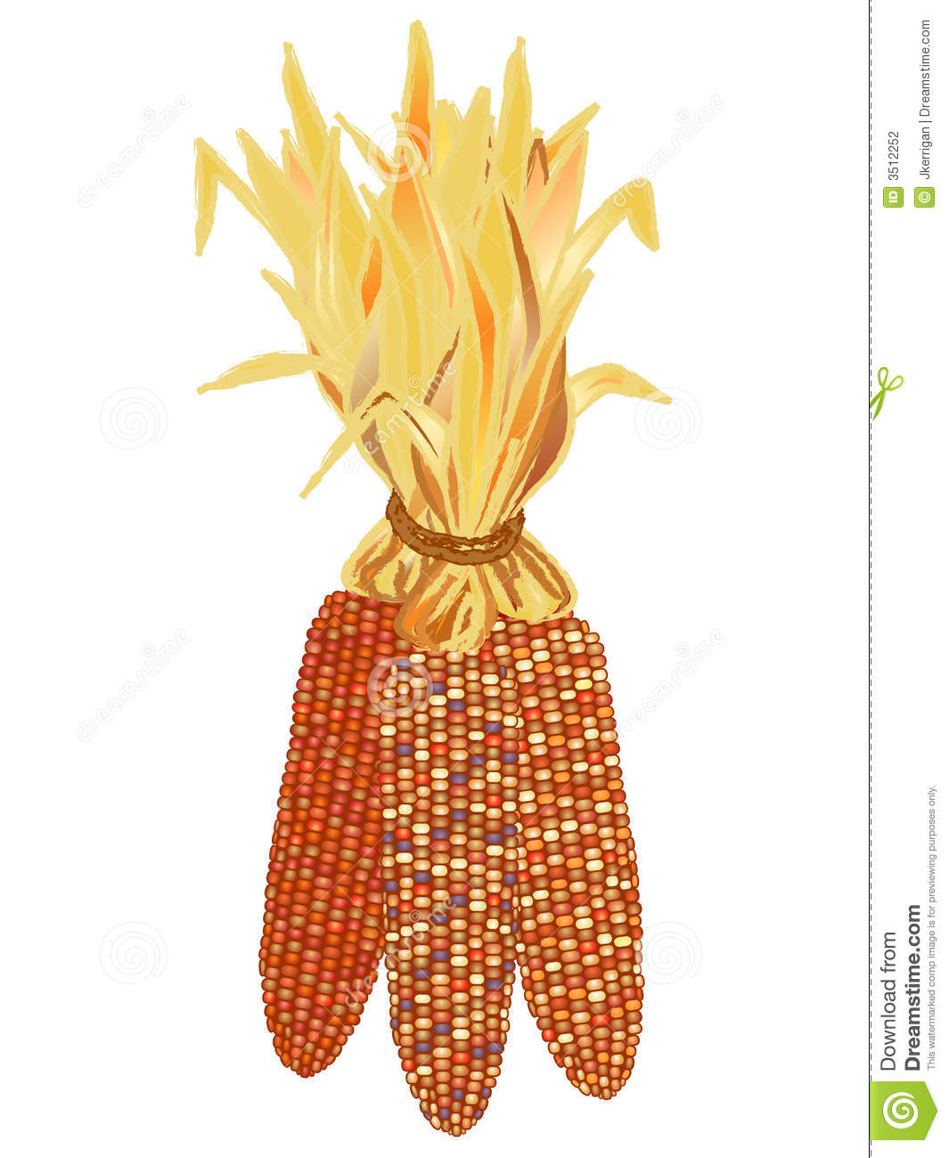 Indian Corn Stock Photography - Image: 3512252