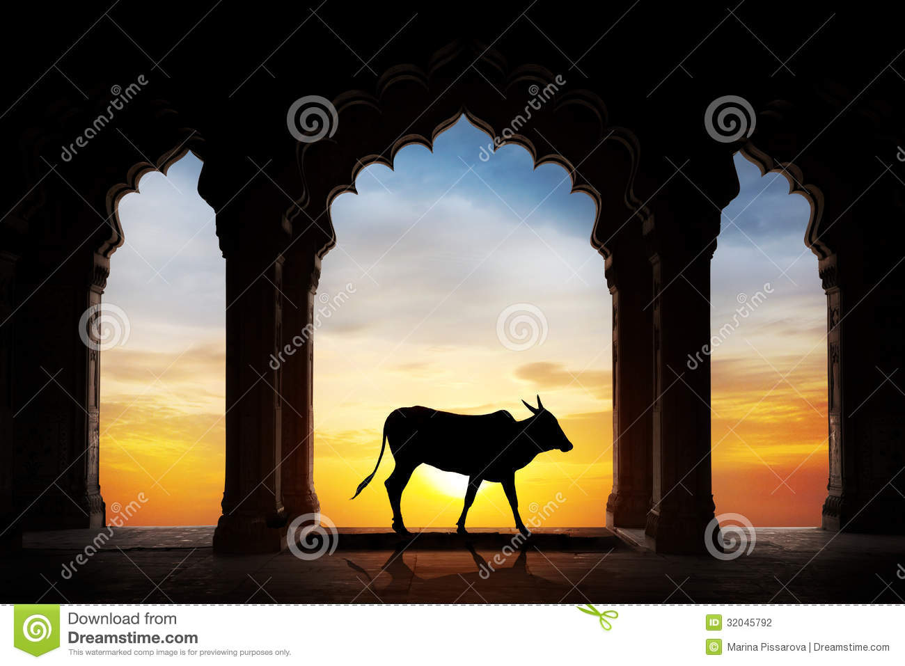 Indian Cow Silhouette Stock Photography Image 32045792