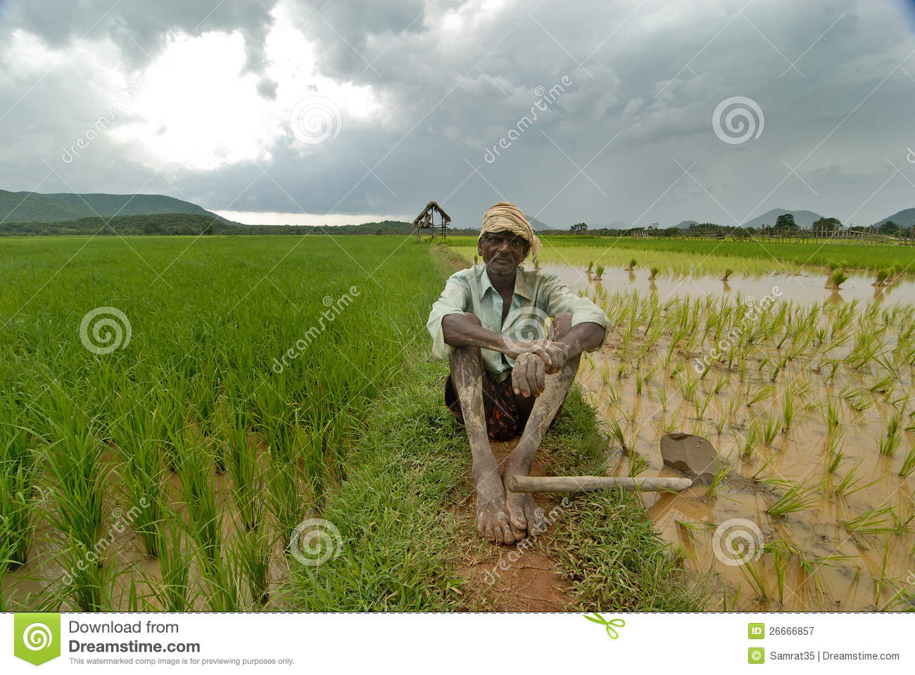 Indian Farmer Editorial Photography - Image: 26666857