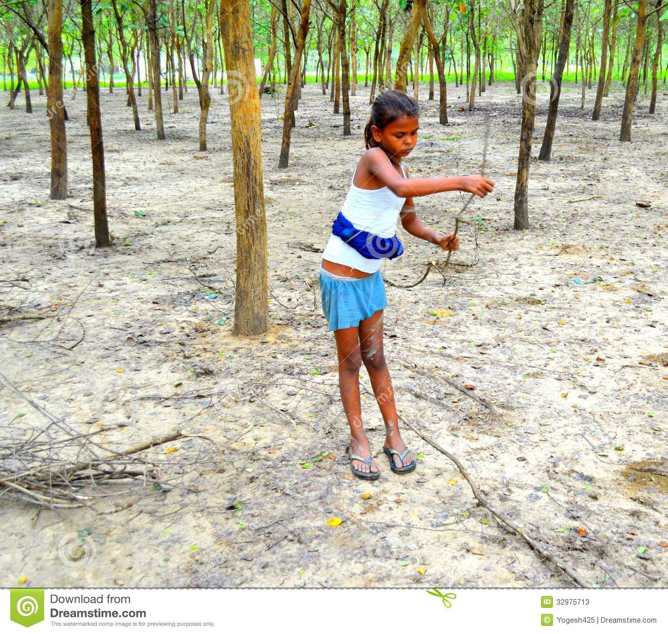 Indian Village Girl Collecting Firewood Editorial Stock Photo - Image Of Child, Asian -6813