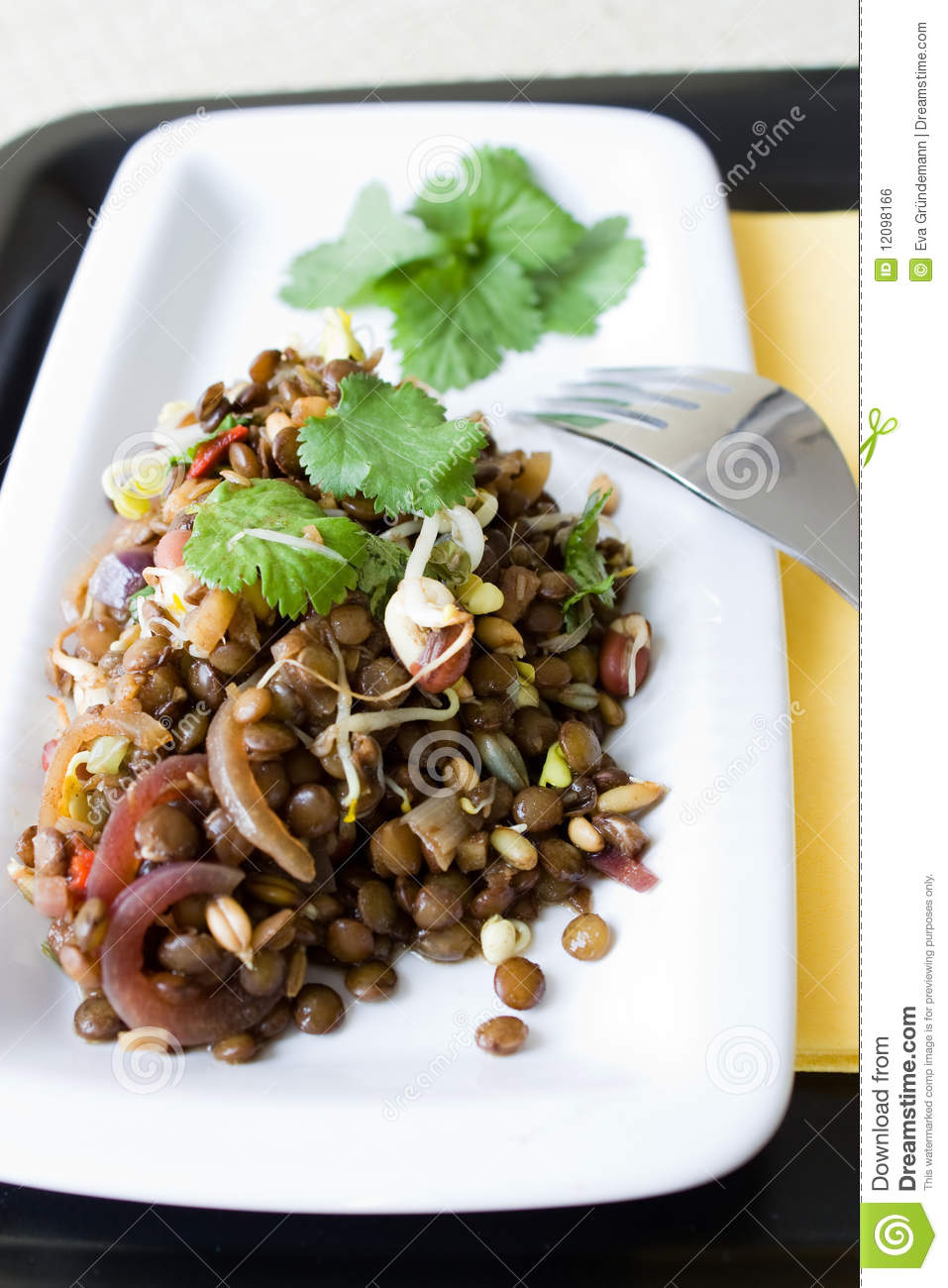 Download Indian lentil salad stock photo. Image of dish, coriander - 12098166