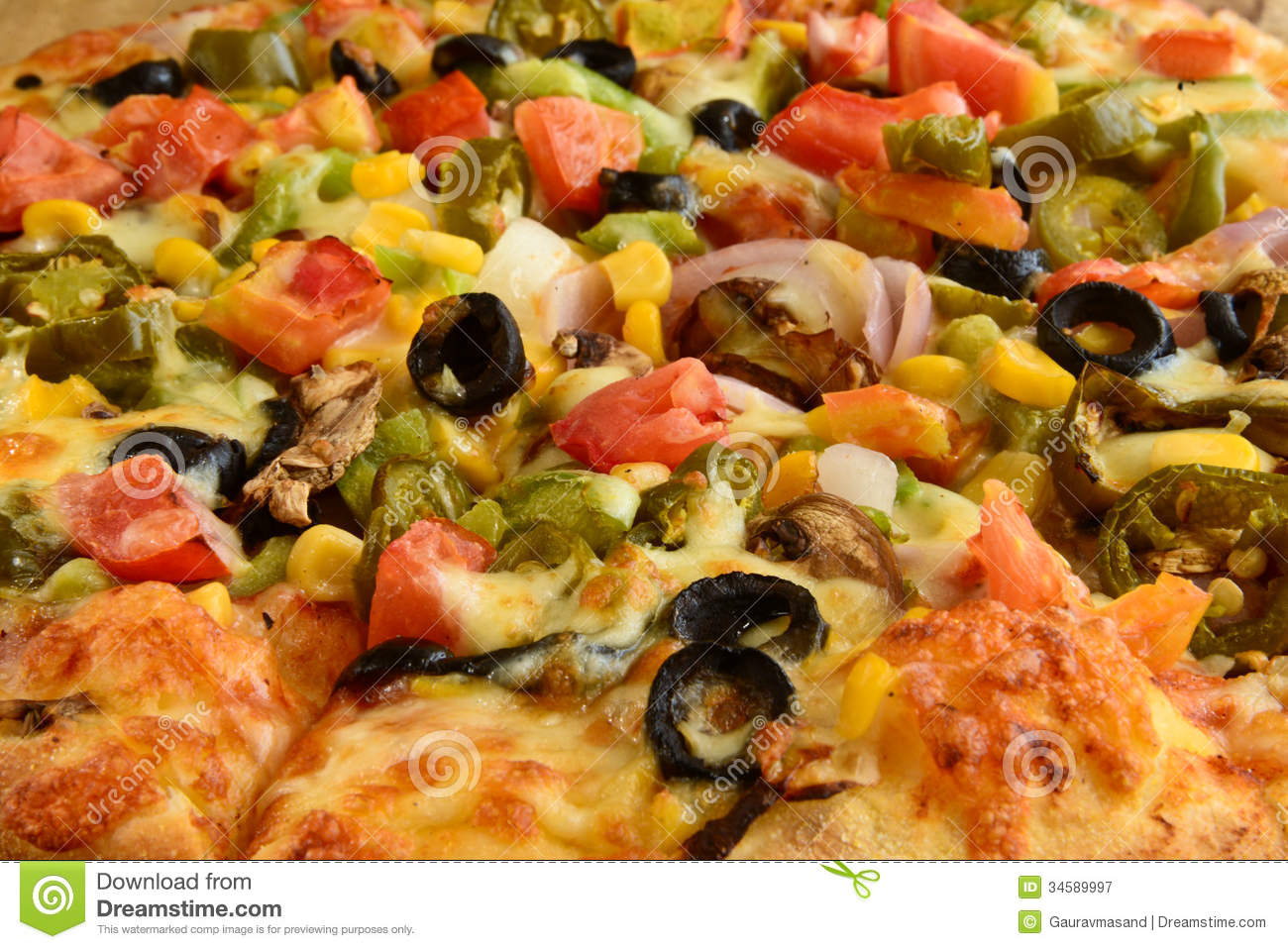 pizza business plan india