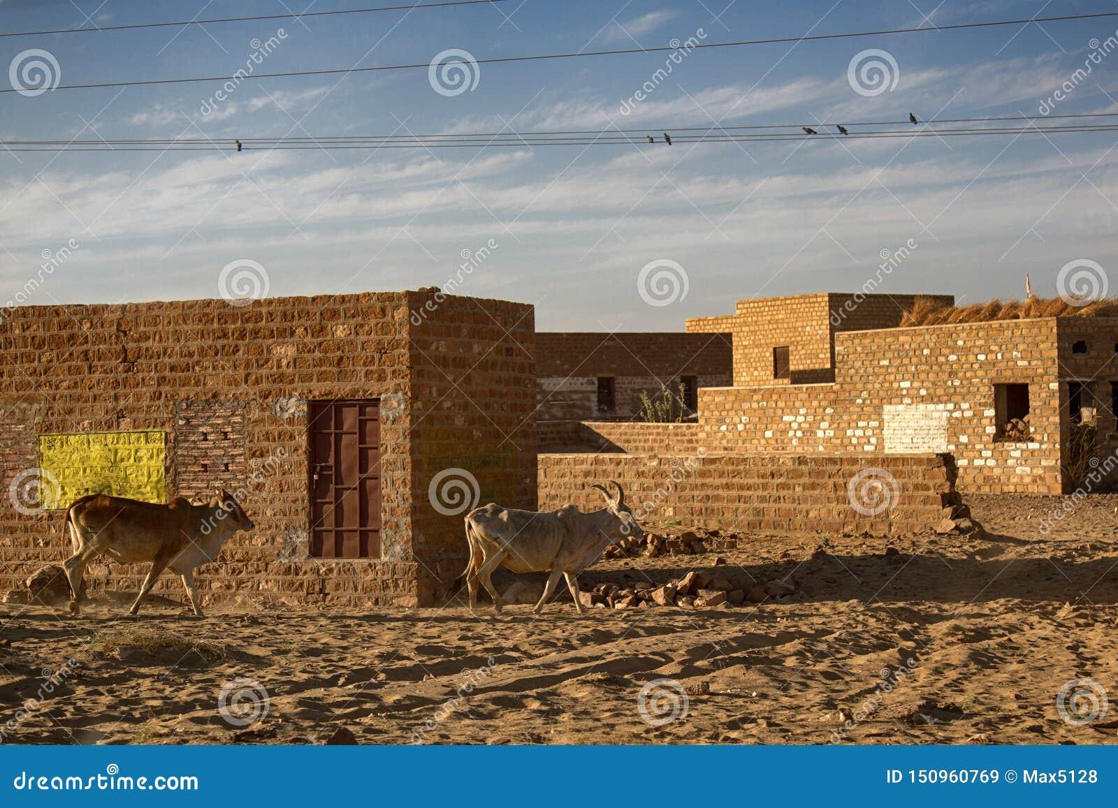 Indian village in the sandy desert