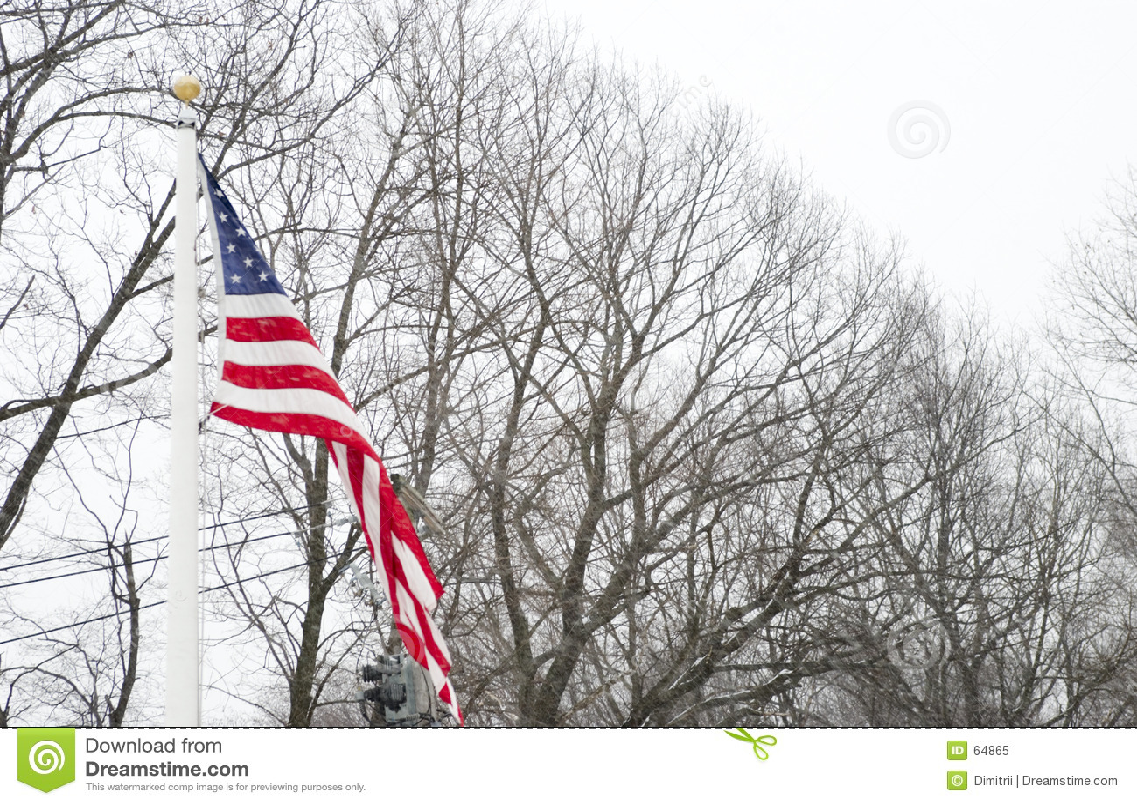 Download Indicateur américain image stock. Image du statehood, pays - 64865
