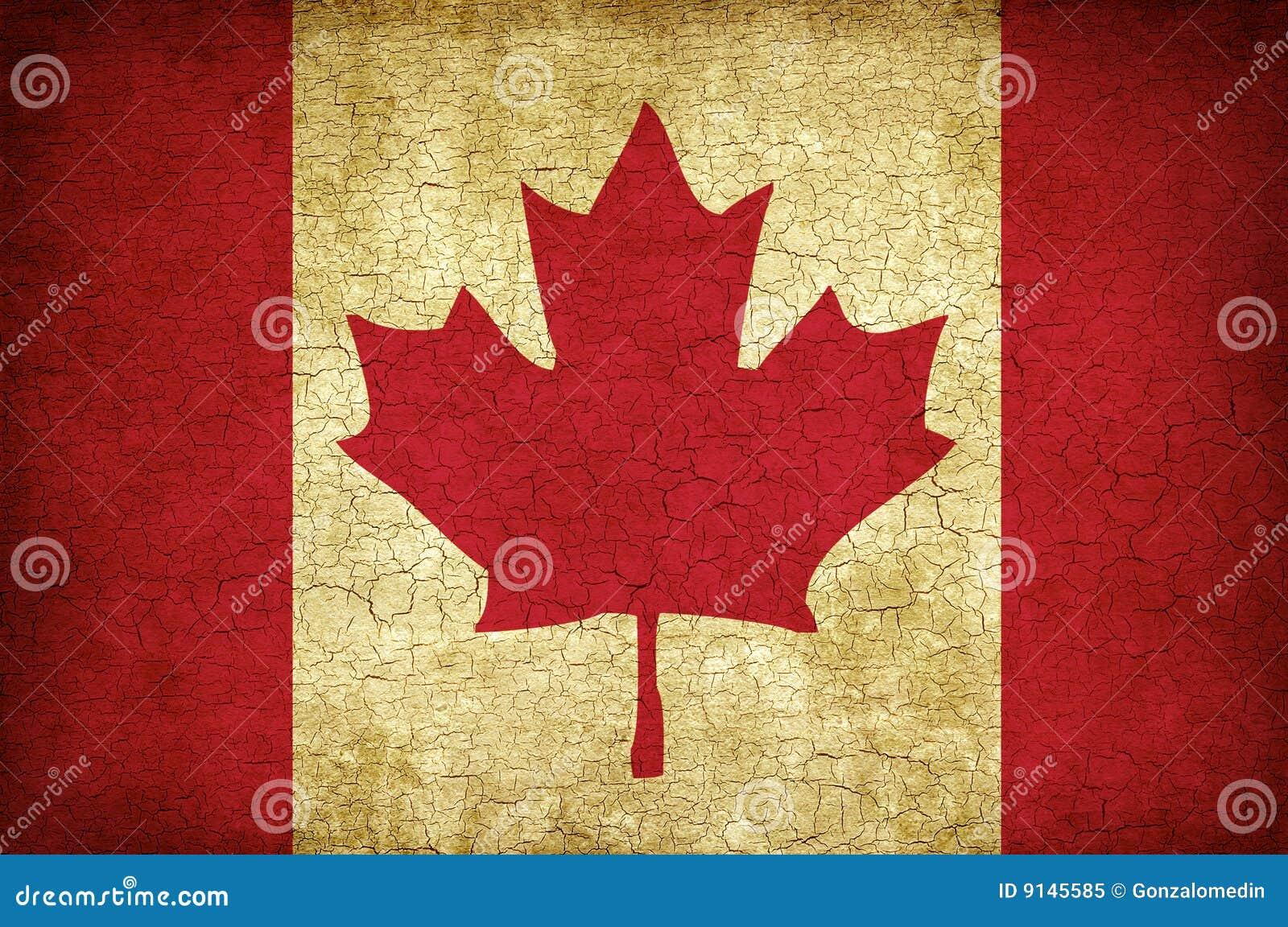 Indicateur de lame d érable du Canada