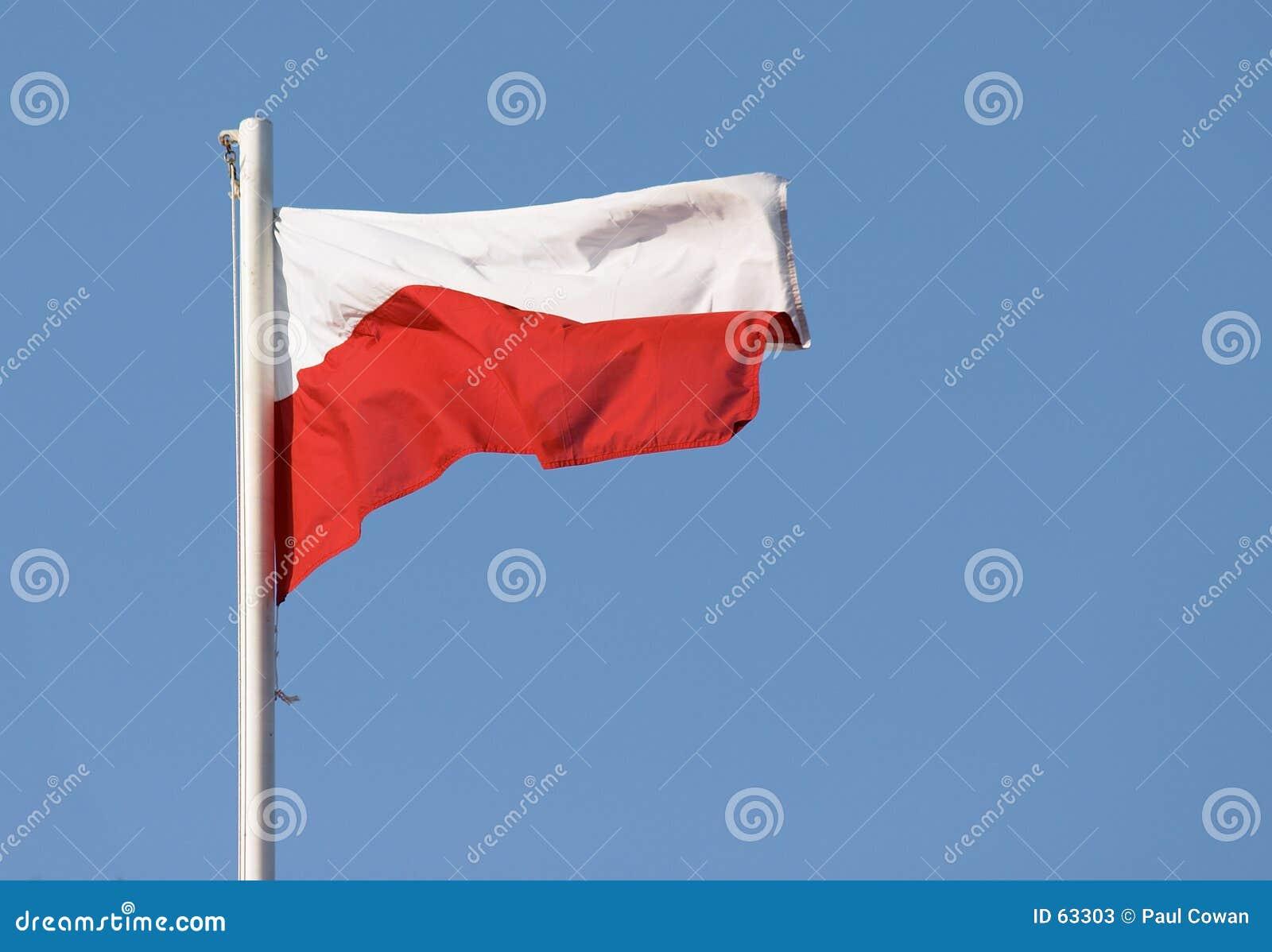 Download Indicateur polonais image stock. Image du normal, poli, flagpole - 63303