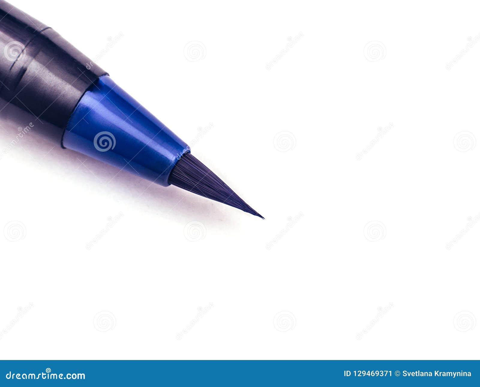 Indicatore nero su un fondo bianco Highlighter blu Concetto della pittura di istruzione Copi lo spazio