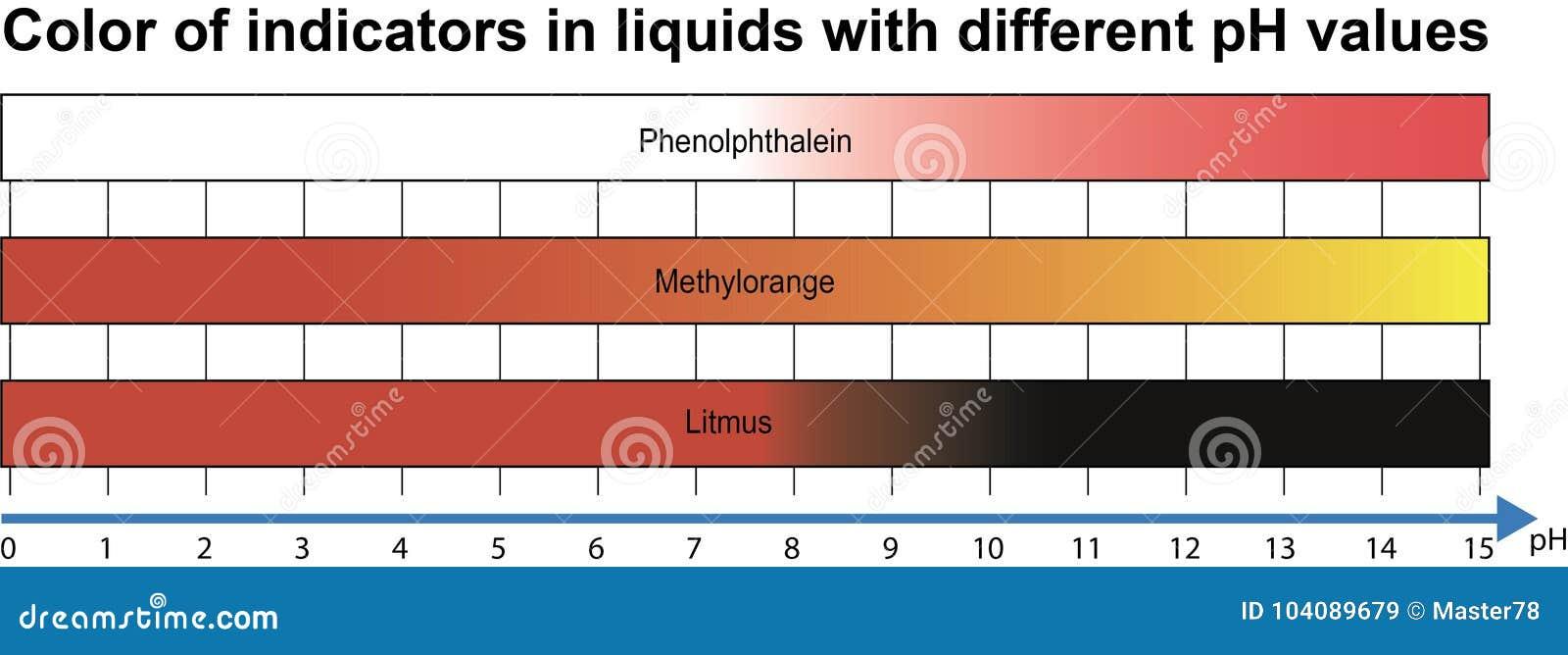 Indicators In Liquids With Different Ph Values Stock Vector