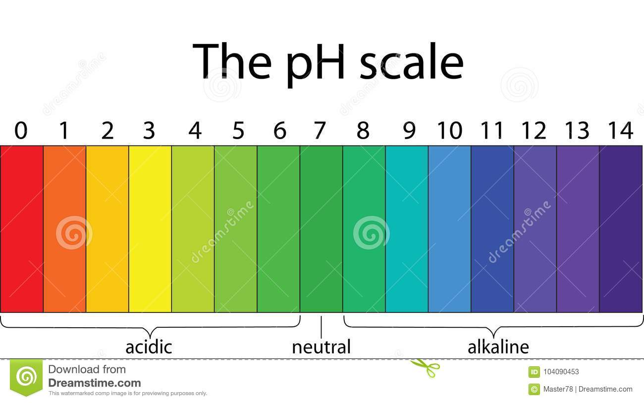 Indicators In Liquids With Different Ph Values Stock