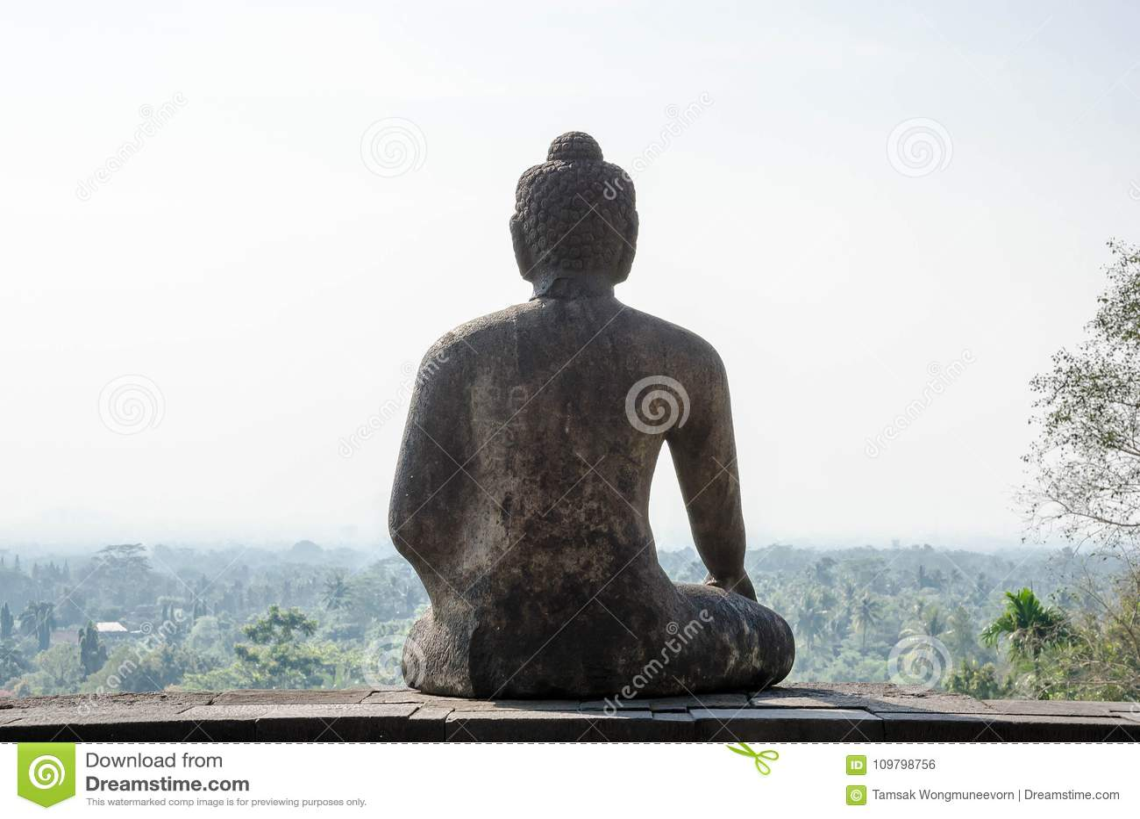 Indietro del tempio di Borobudur della statua di Buddha