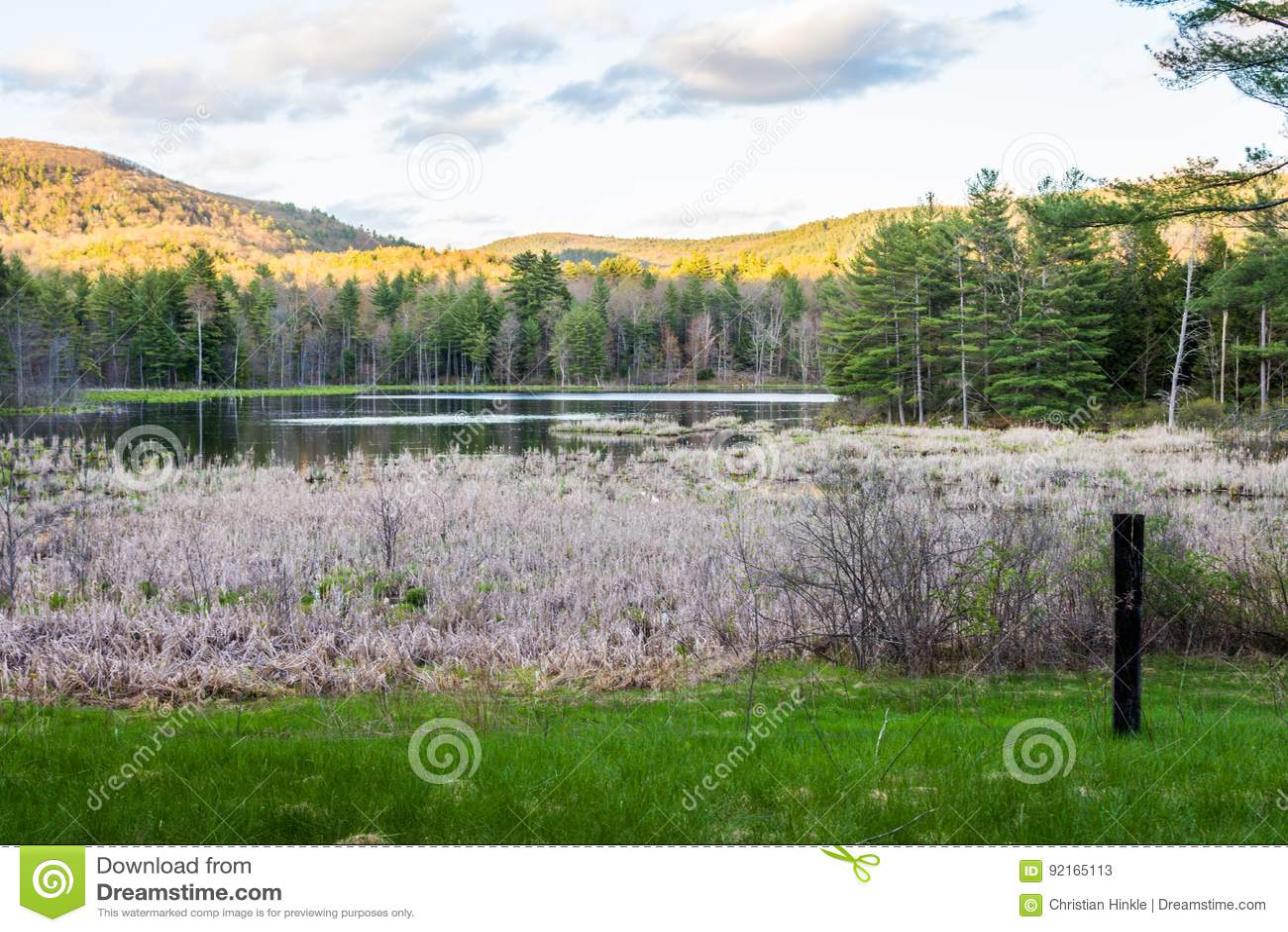Indische Vijver in Mevrouw Sherri Forest in New Hampshire