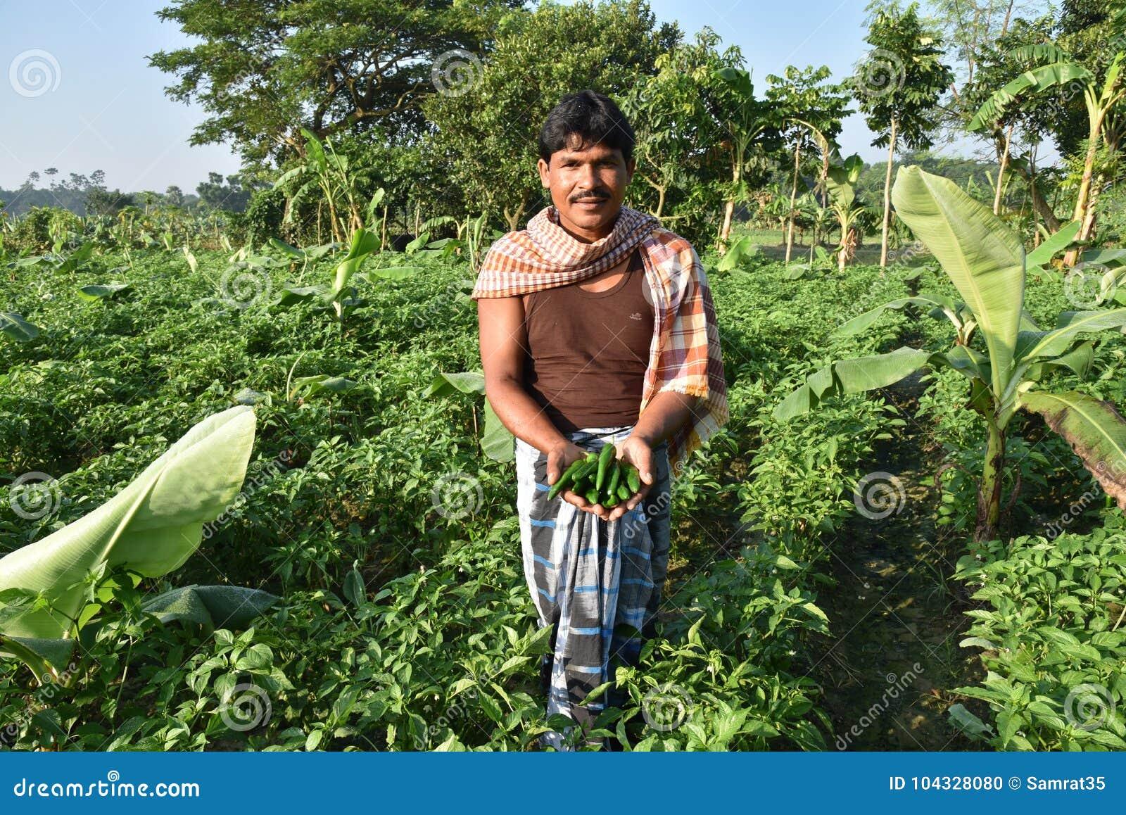 Indischer Landwirt