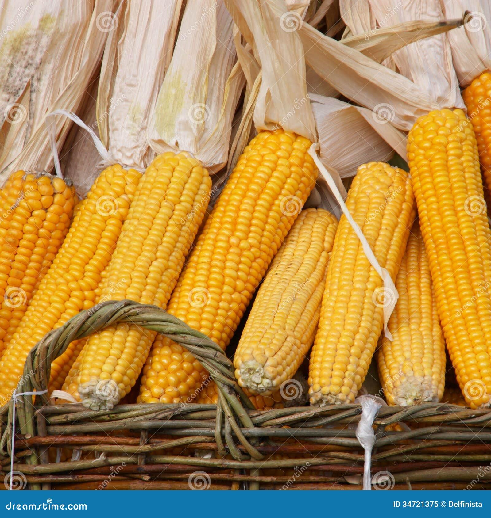 Indischer Mais: Maiskolben in einem Korb - Fotos auf Lager
