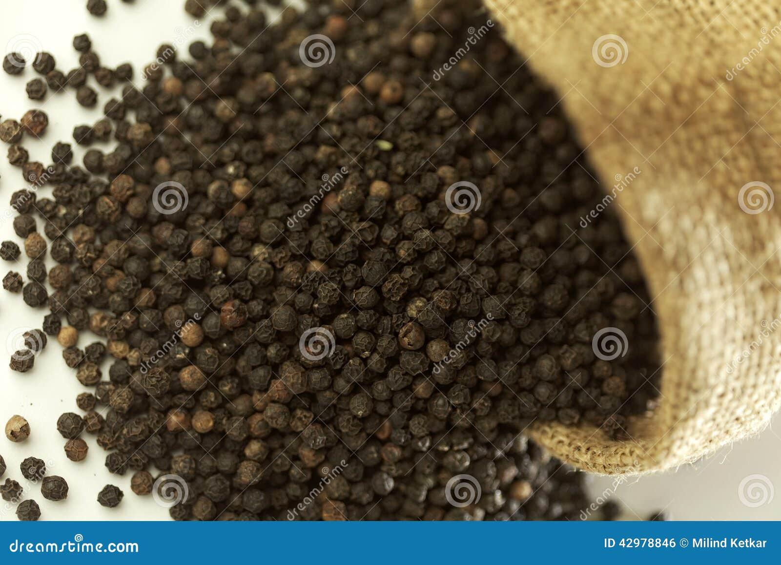 Indisk krydda-svart peppar