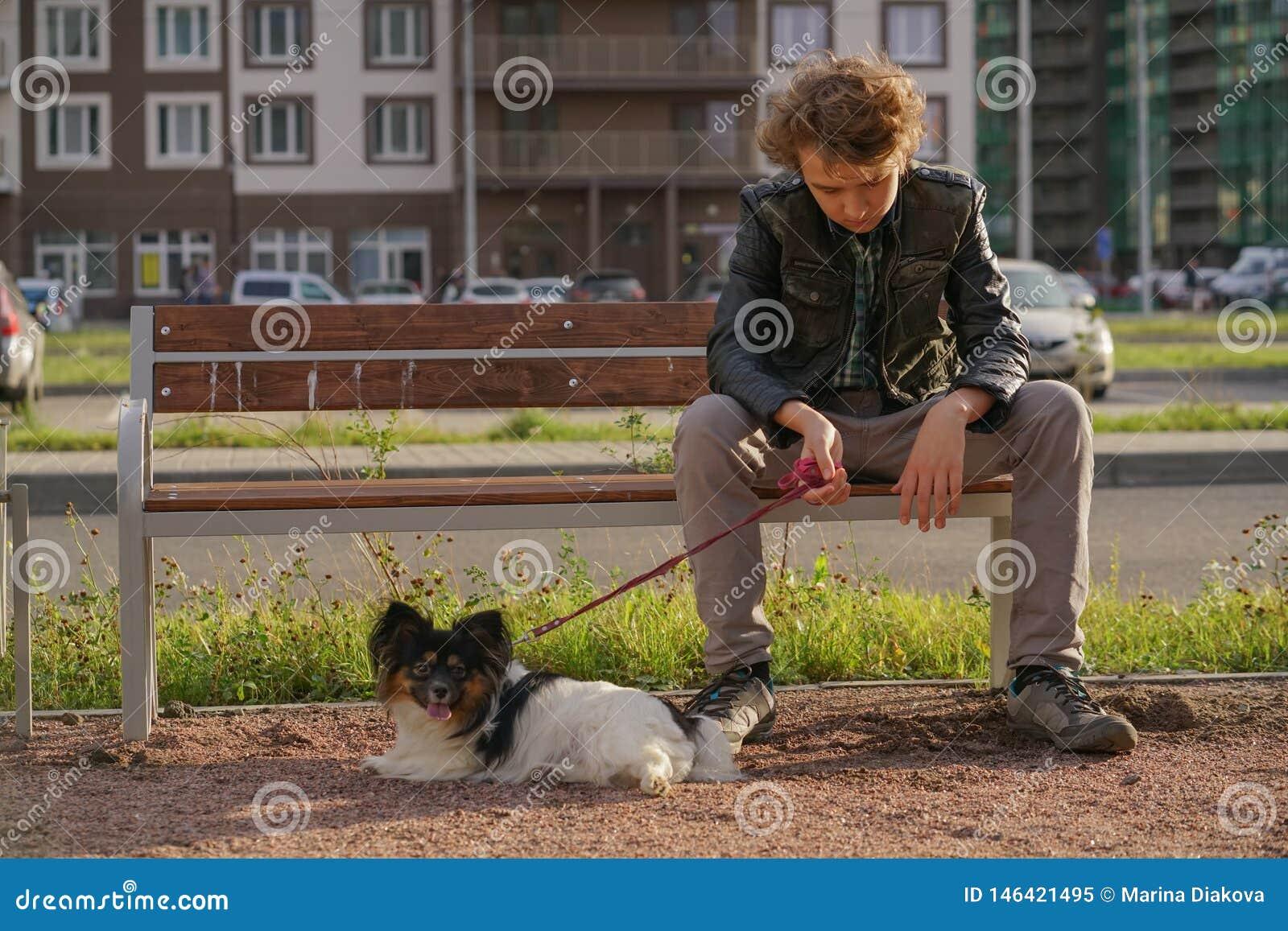 Individuo solo triste que se sienta en un banco con su perro las dificultades de la adolescencia en concepto de la comunicaci?n