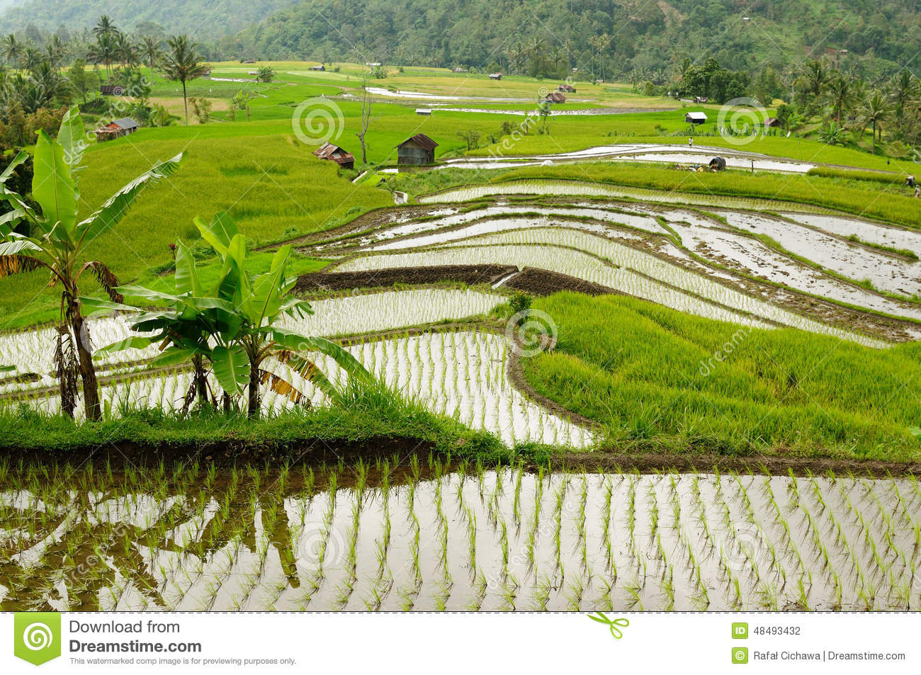 city or countryside In general, a rural area or countryside is a geographic area that is located outside towns and cities the health resources and services administration of the us.