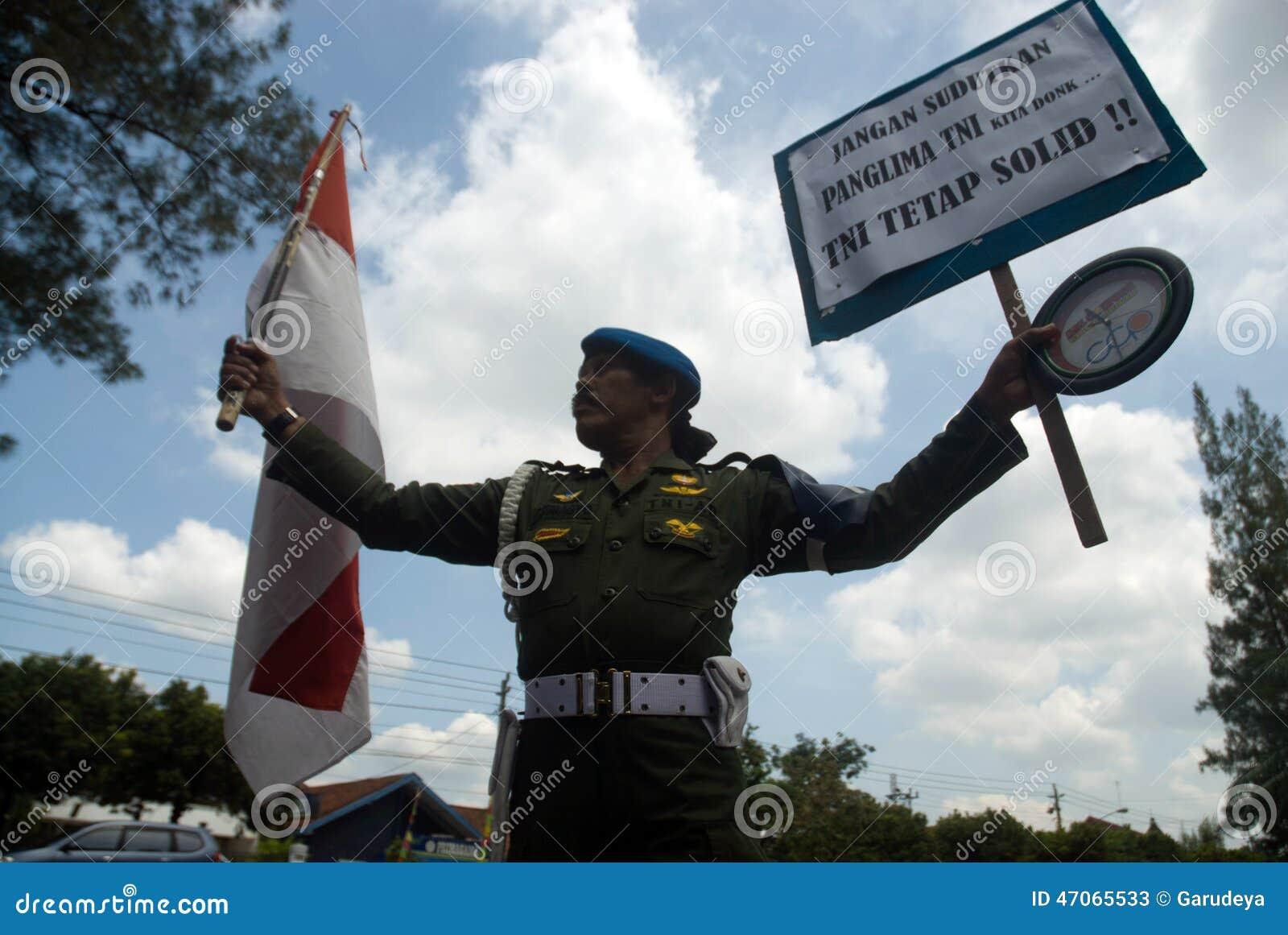 INDONESIA TNI PROFESSIONALISM