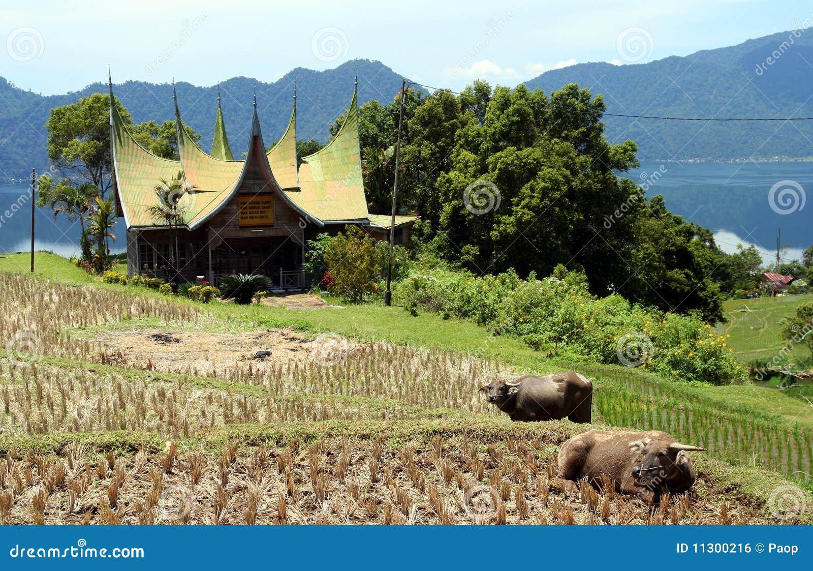 Indonesisches traditionelles Haus