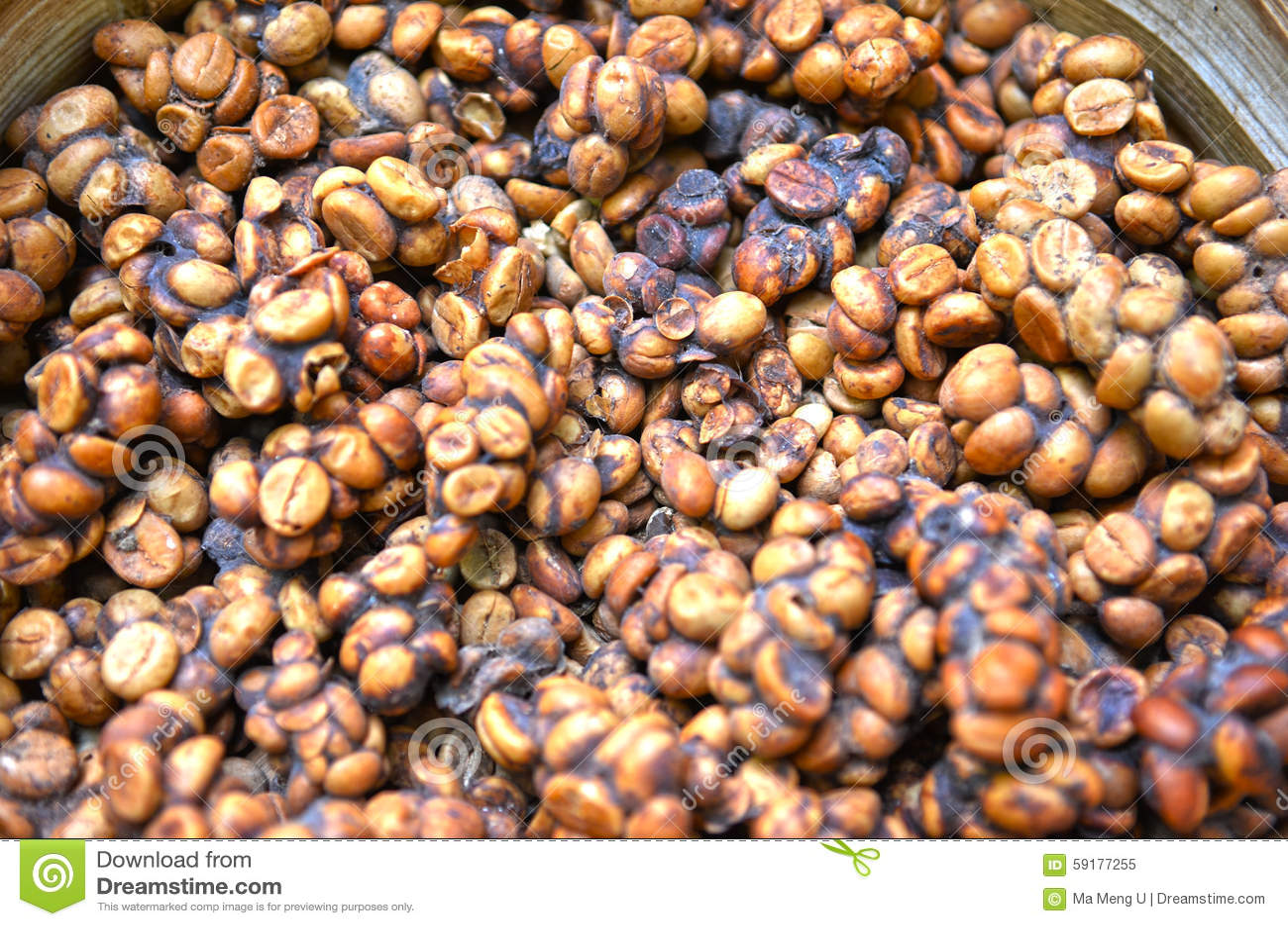 Indonesisk luwakkaffeböna
