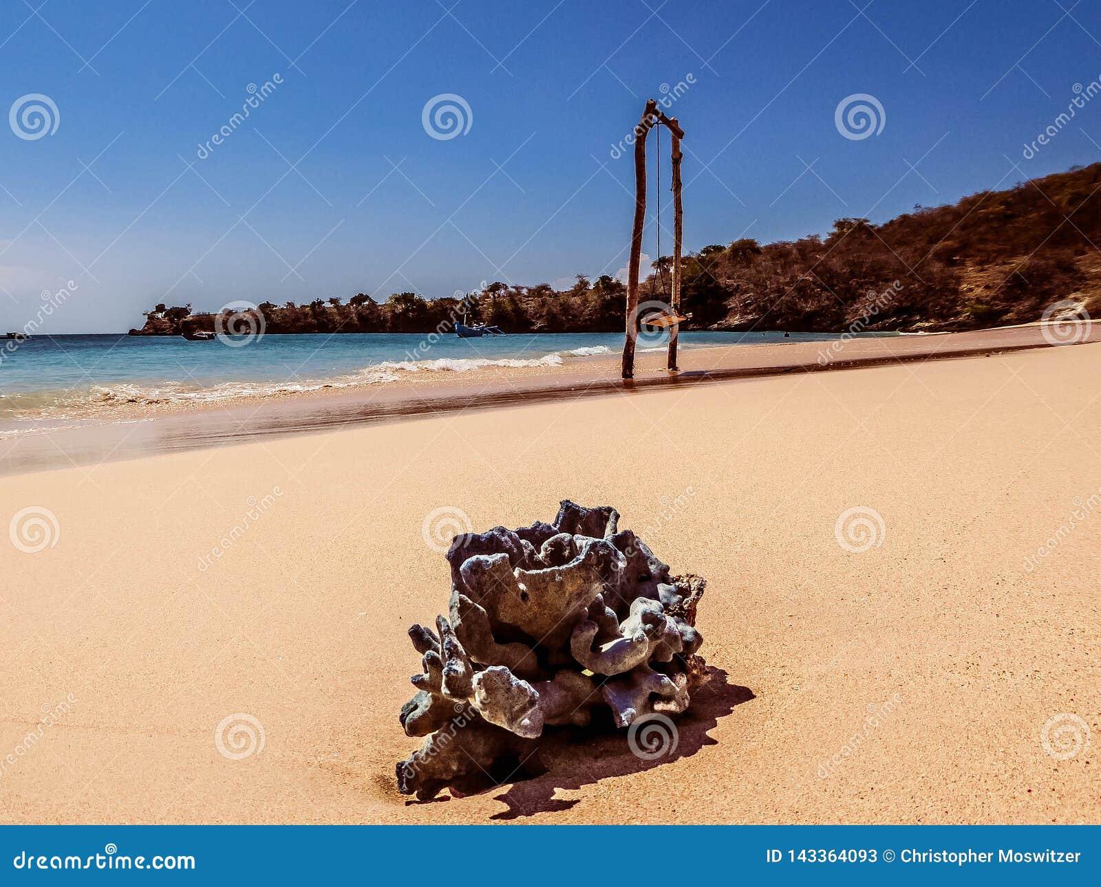 Indonezja - huśtawka na Różowej plaży