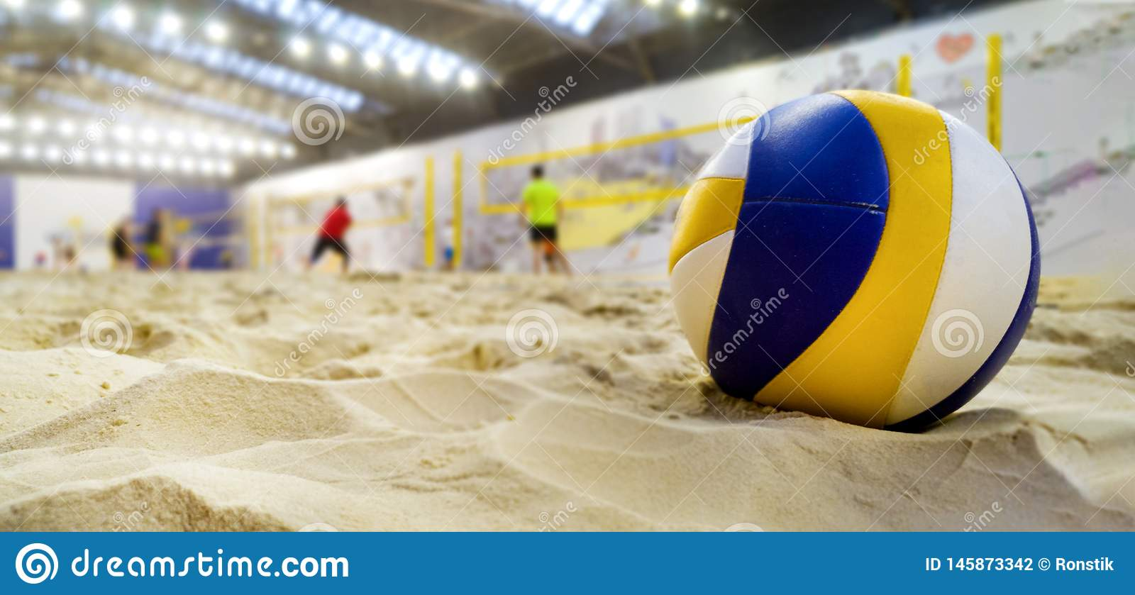 6 115 Indoor Volleyball Photos Free Royalty Free Stock Photos From Dreamstime