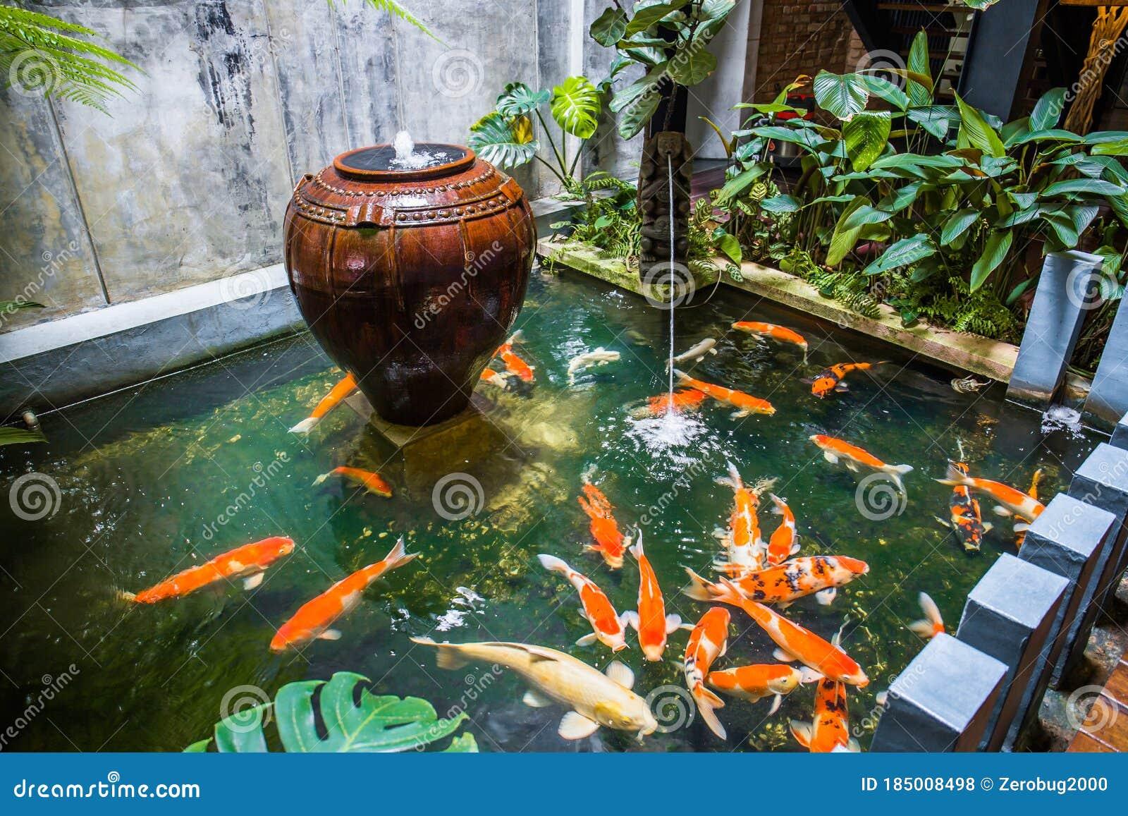 Fish Pond Stock Photo Image Of Malacca 1825 Pond 185008498
