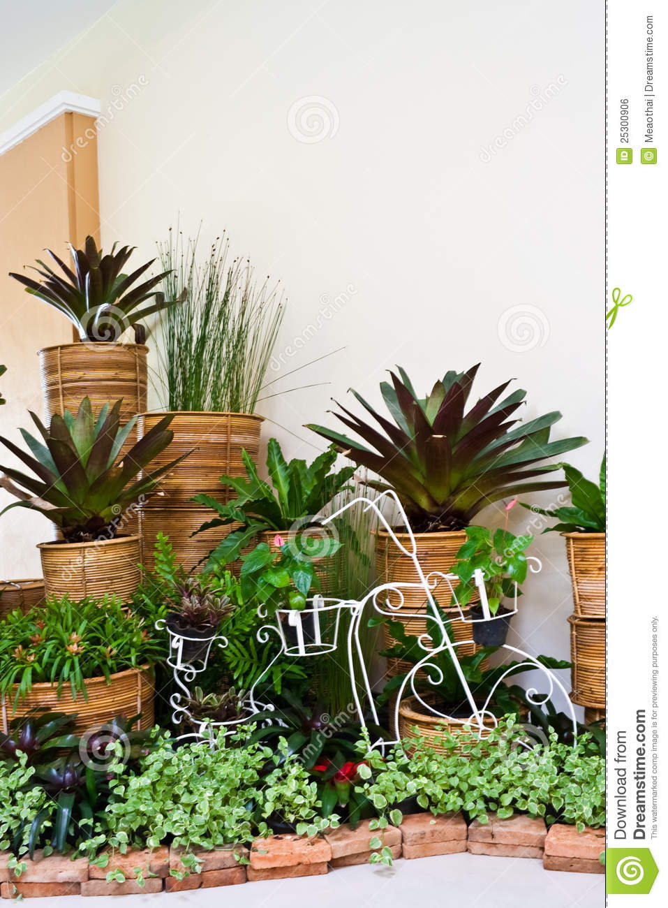 Indoor Garden For Room Corner Decoration Stock Photo Image 25300906