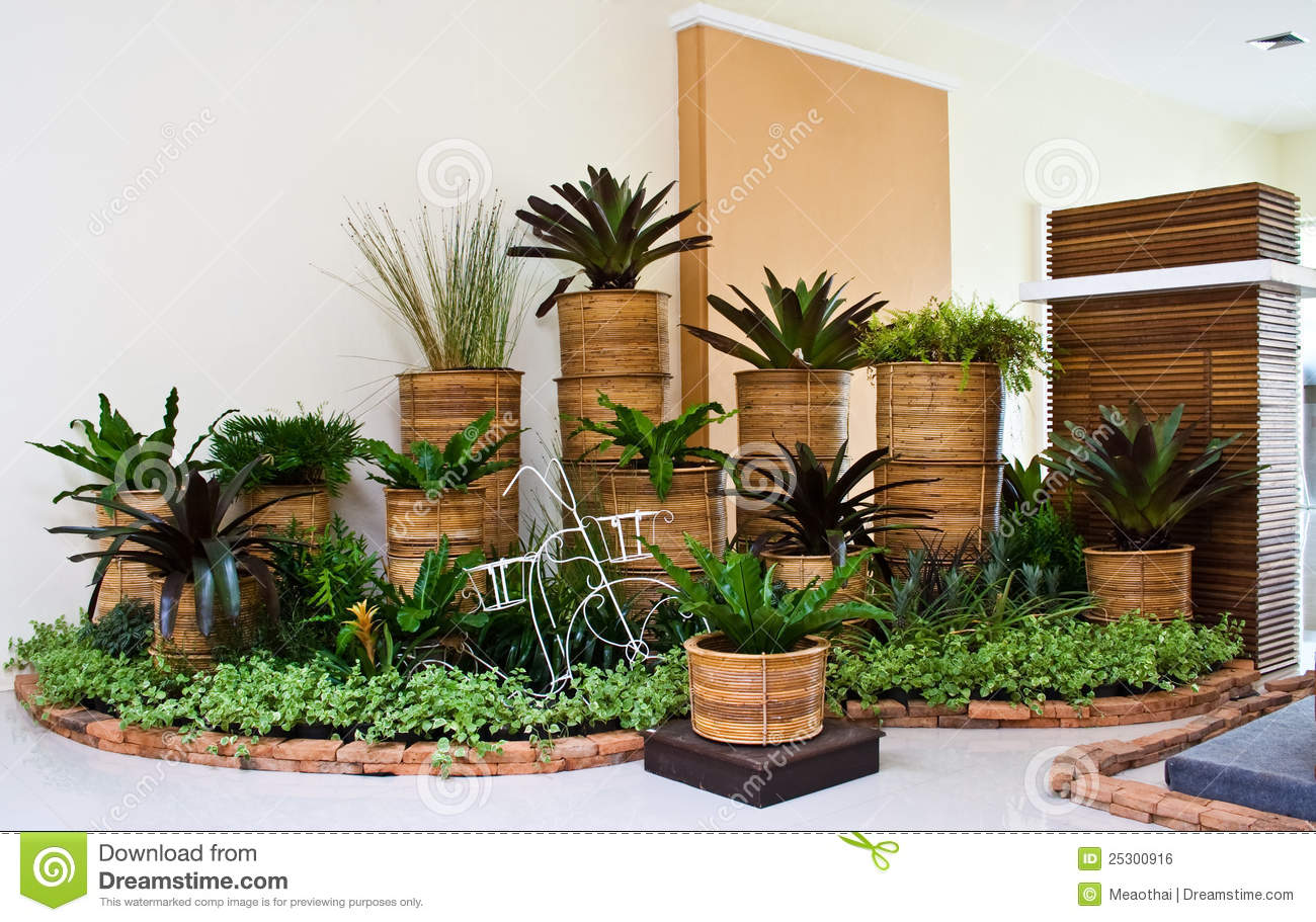 Indoor garden for room corner decoration stock photo for Casas con jardin interior