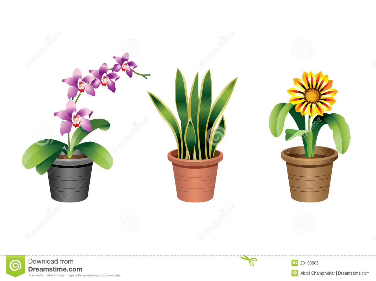 Indoor home and office plants royalty free stock image image 20130886 - Plants in home ...
