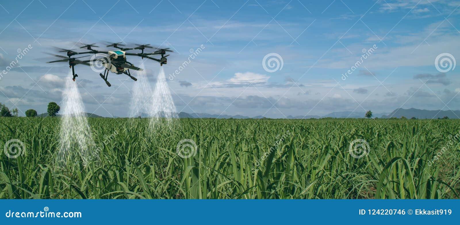 Industria astuta 4 di agricoltura di Iot 0 concetti, fuco nell uso dell azienda agricola di precisione per spruzzo un acqua, fert