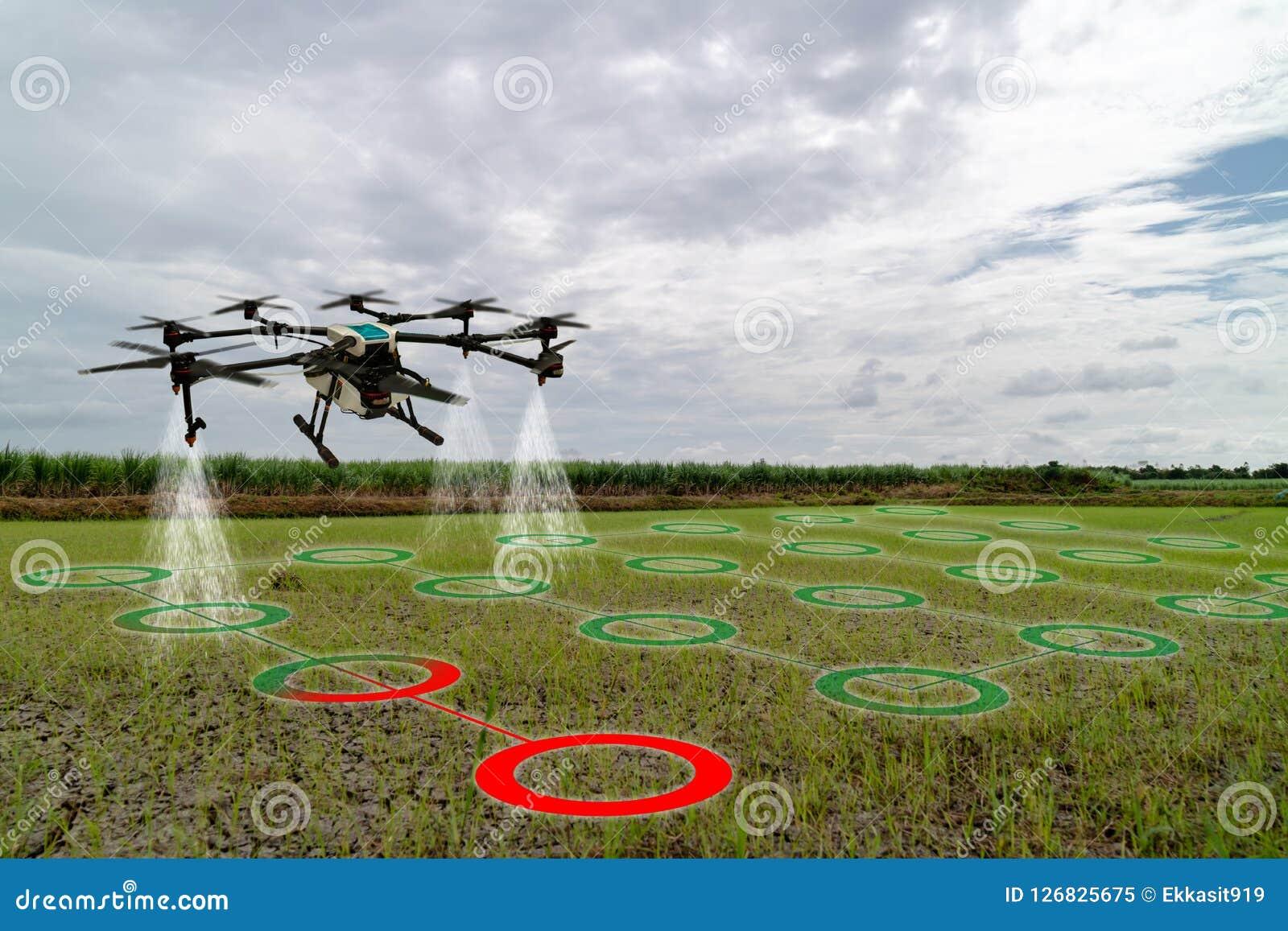 Industria elegante 4 de la agricultura de Iot 0 conceptos, abejón en el uso de la granja de la precisión para el espray un agua,