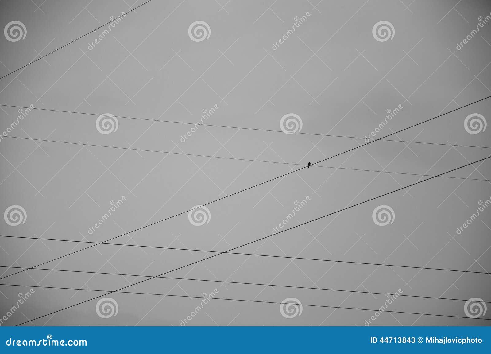 Industrie gegen Natur stockbild. Bild von vogel, sommer - 44713843