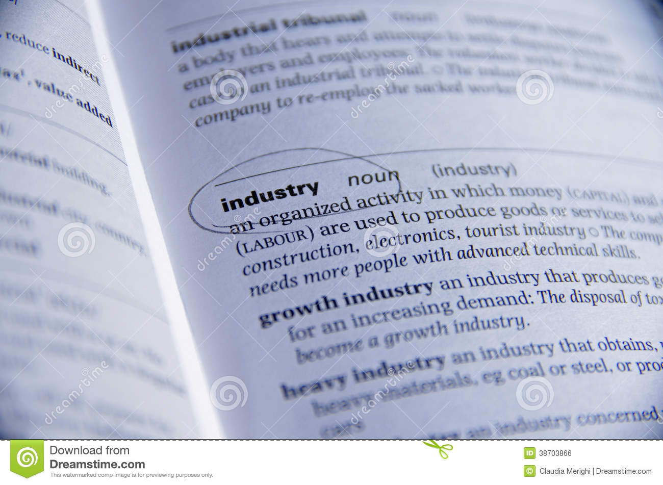 industry definition Industry is the production of goods or related services within an economy the major source of revenue of a group or company is the indicator of its relevant industry.