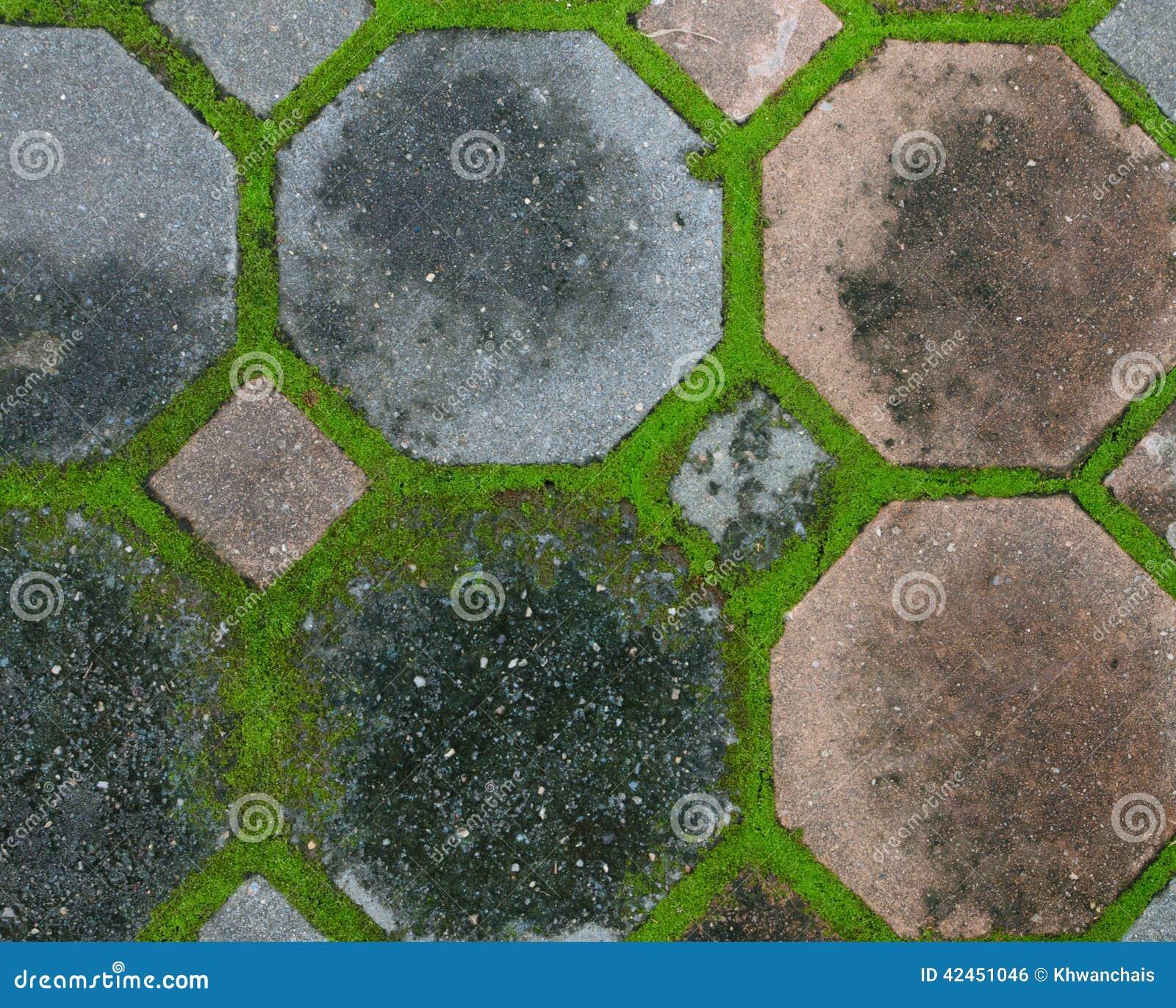 Ineinandergreifende Betondecke mit dem Moos, das entlang wächst