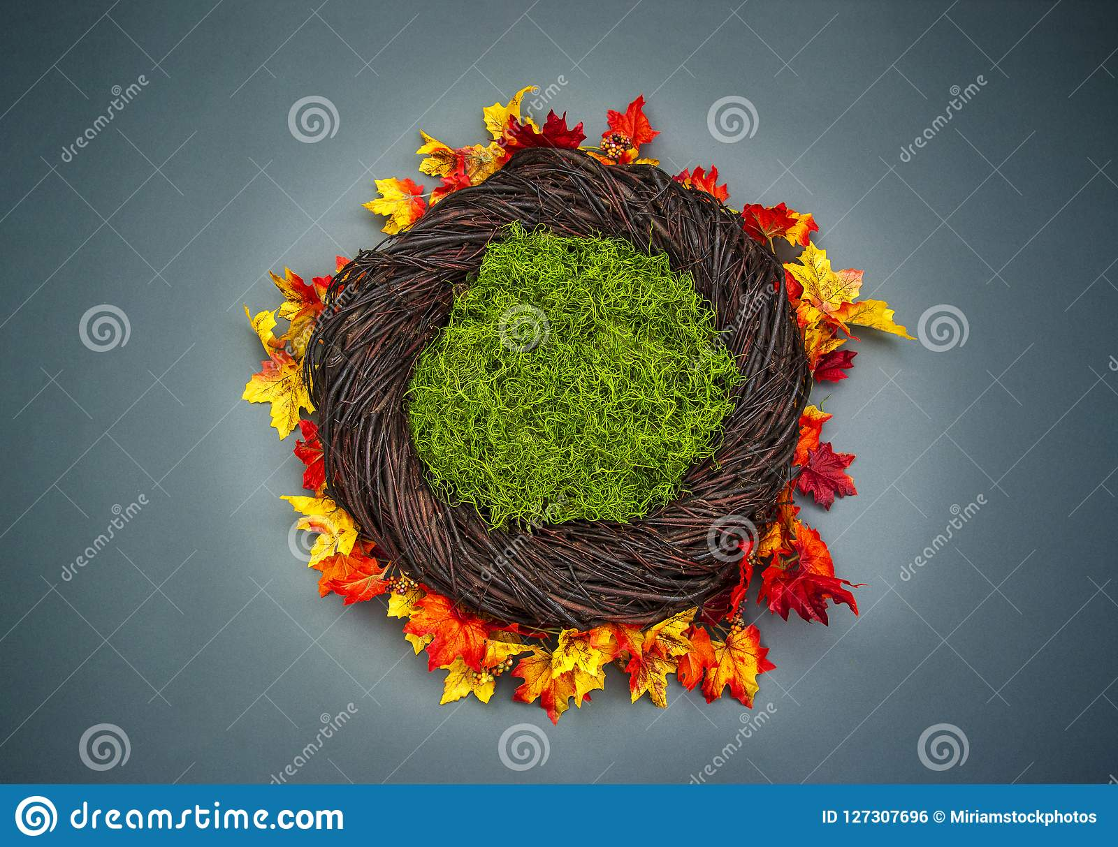 Infant Nest Fantasy Background Photo Prop With Colorful Fall Lea