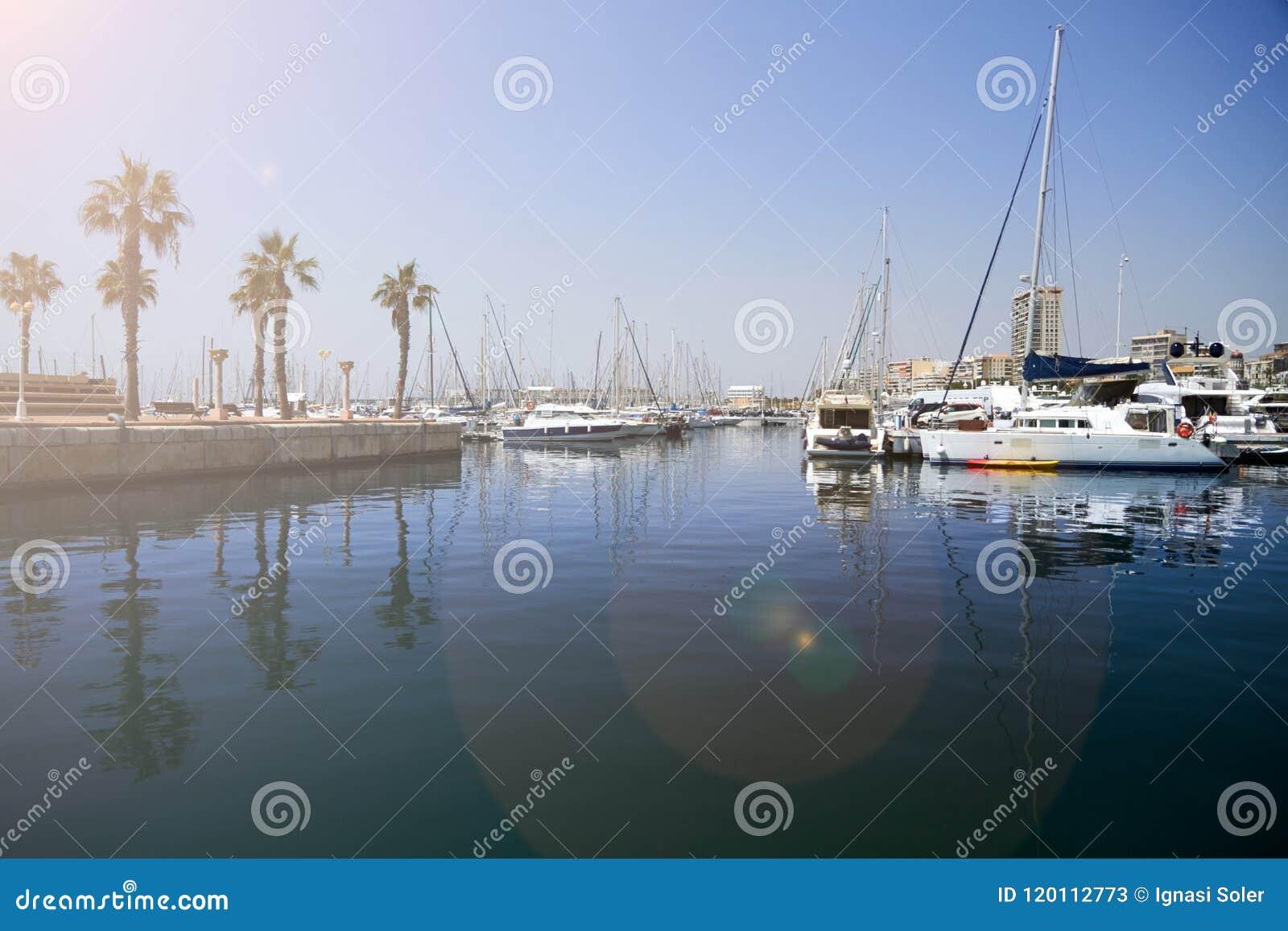 Infante de marina de Alicante con una sol